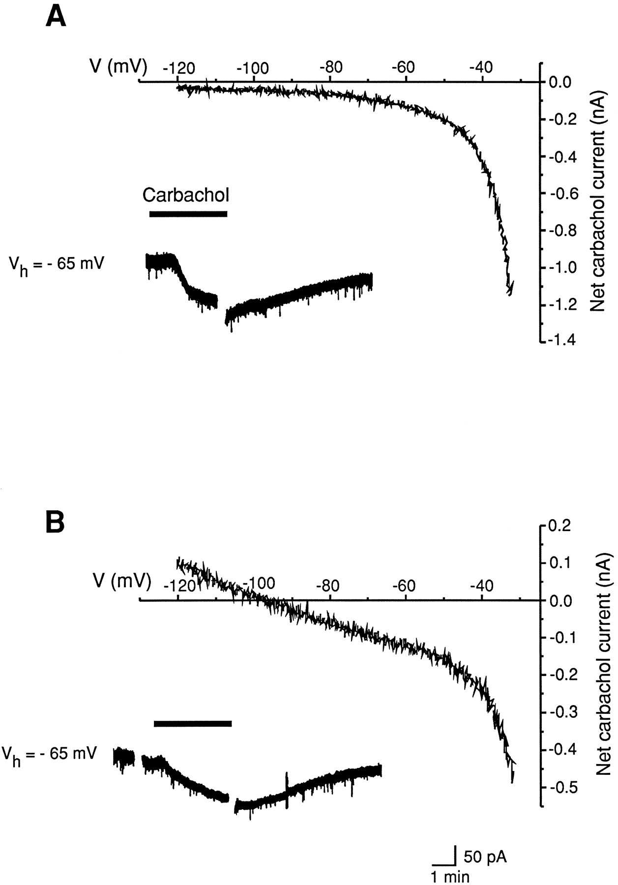 Muscarinic Activation Of A Voltage Dependent Cation Nonselective The Polarity High Output Is Simply Determined By Download Figure