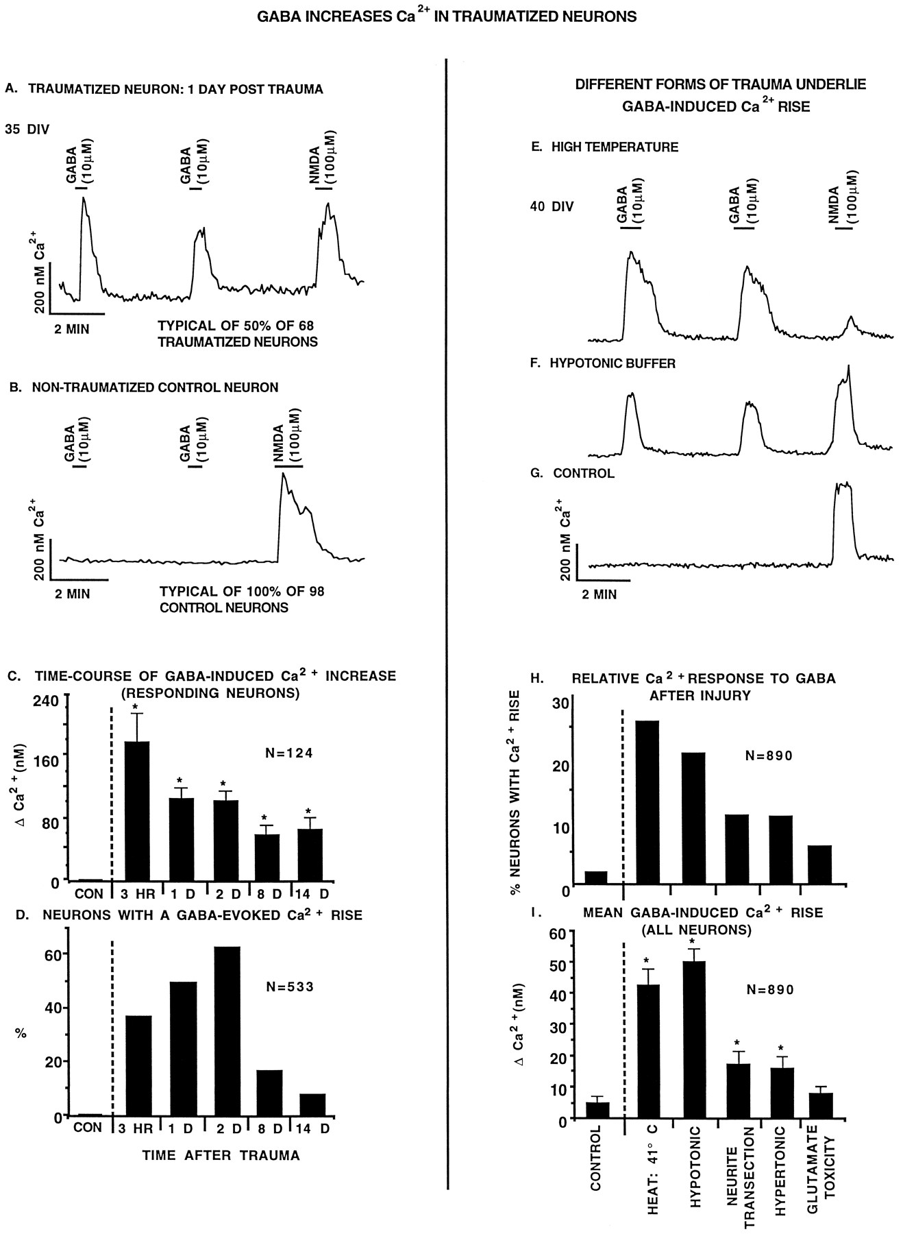 Excitatory Actions of GABA after Neuronal Trauma | Journal of
