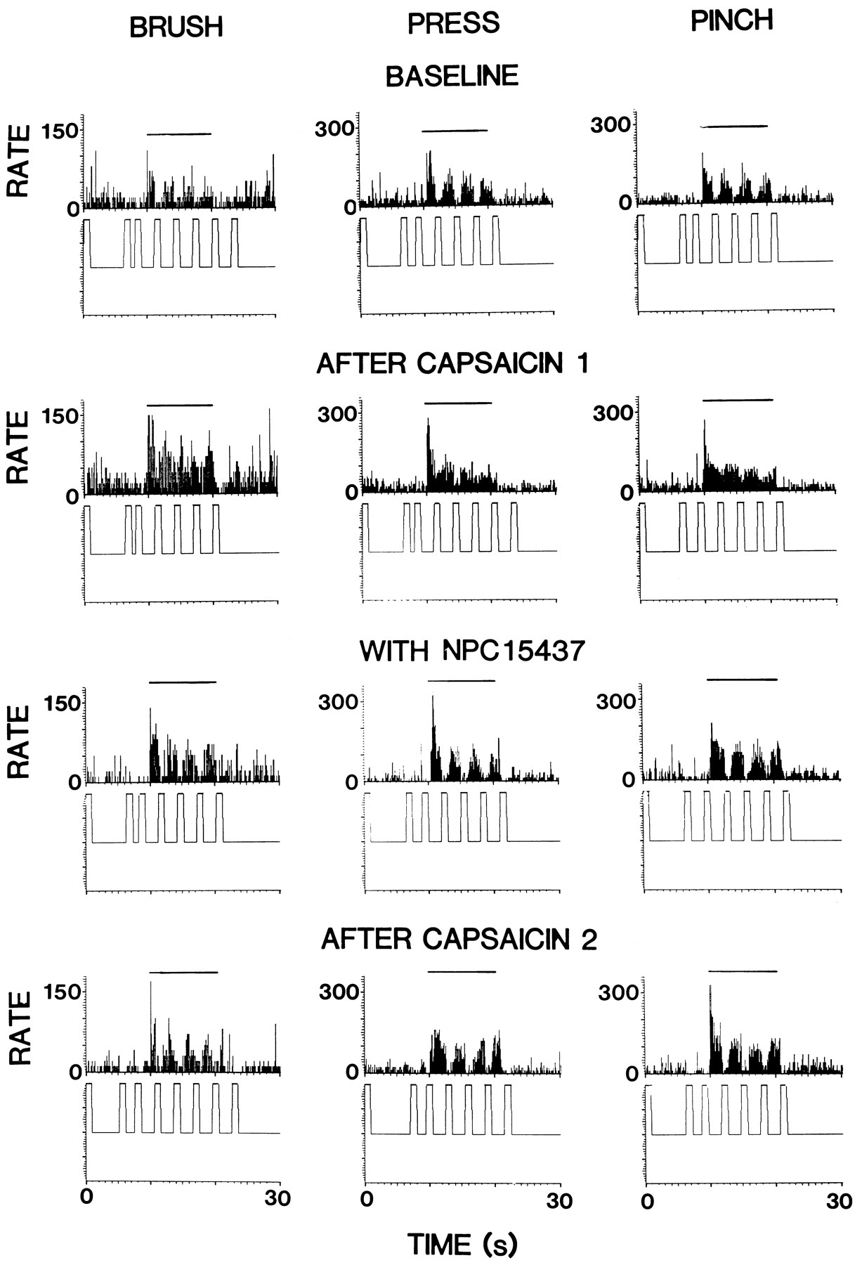 Possible Role of Protein Kinase C in the Sensitization of