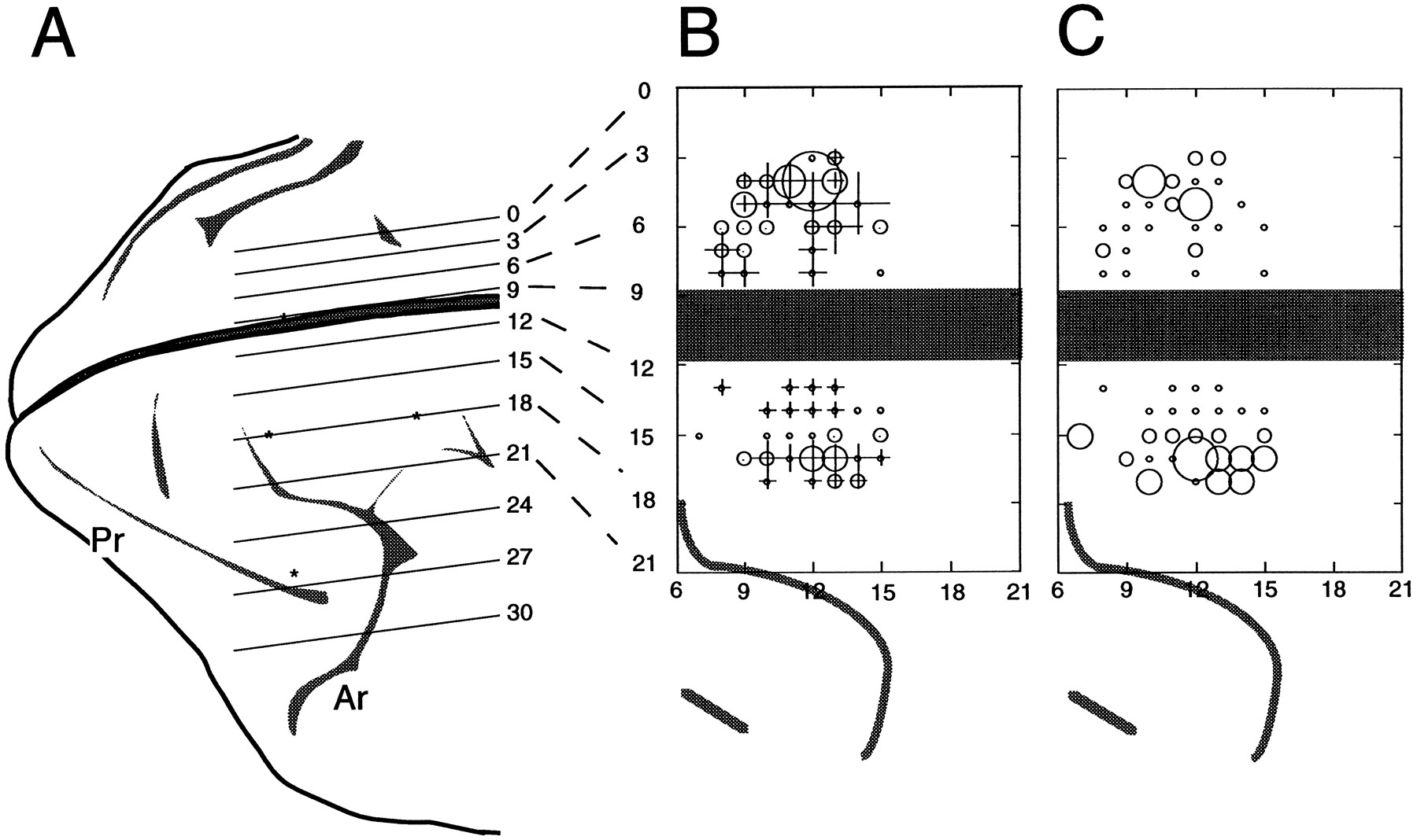 wiring diagram gillig bus blue bird bus diagram wiring