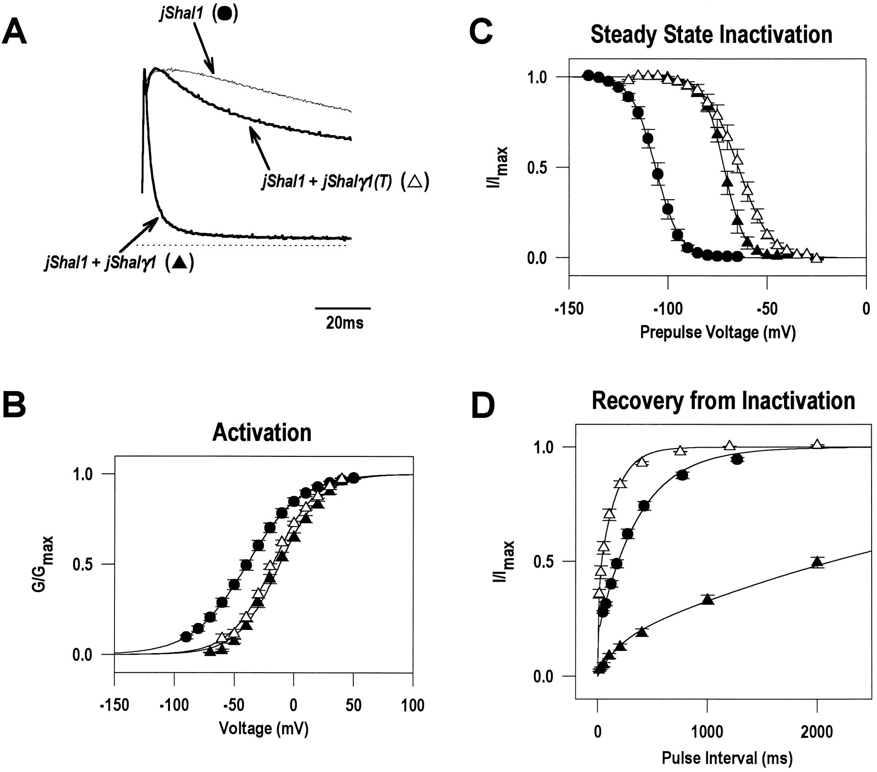 A Novel Subunit For Shal K Channels Radically Alters Activation And Amino 2000 150 Tabs Download Figure Open In New Tab
