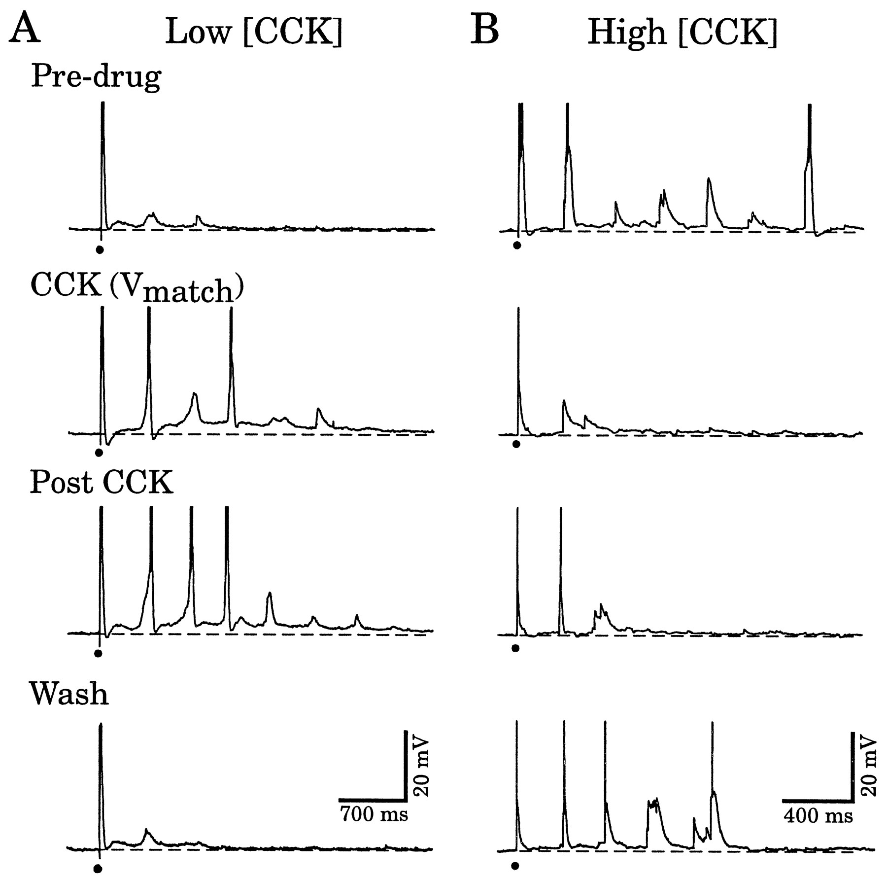 Peptidergic Modulation Of Intrathalamic Circuit Activity In Vitro Mains High And Low Voltage Cut Off Using Ic 324 Explained Download Figure