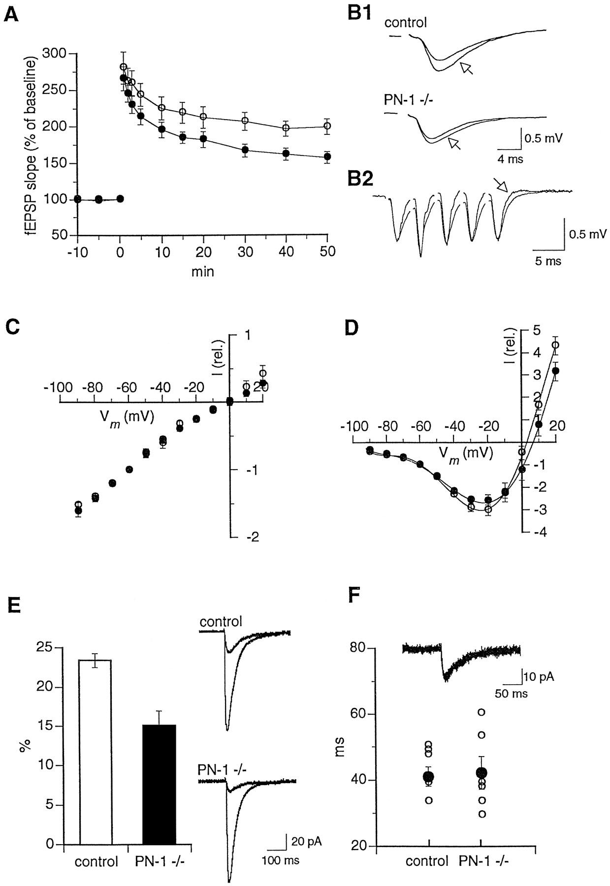 Endogenous Serine Protease Inhibitor Modulates Epileptic