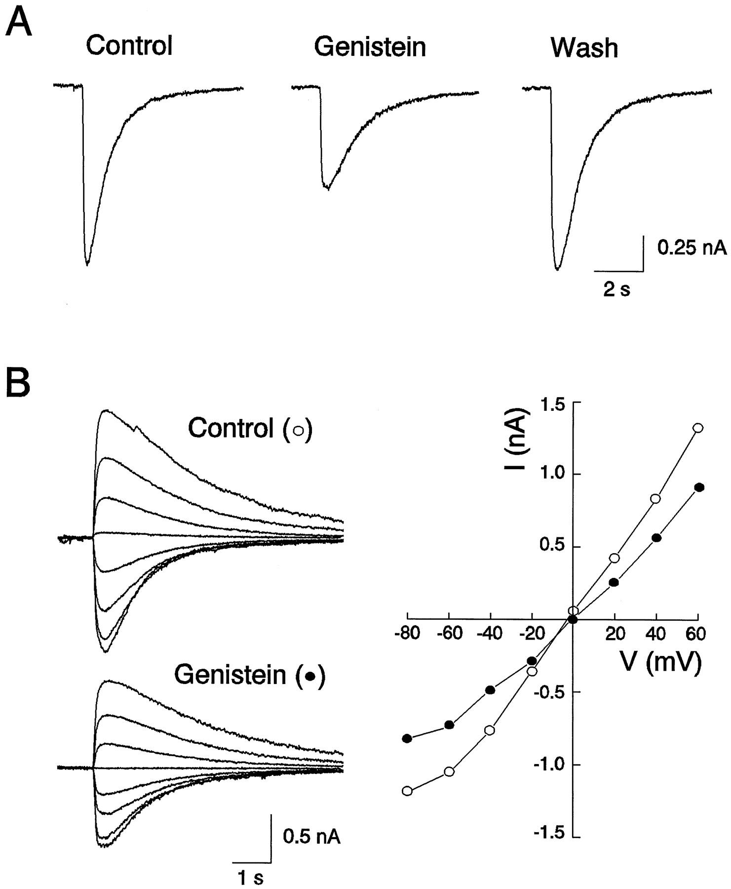 modulation of gabaa receptor function by tyrosine phosphorylation of DBZ Multi download figure