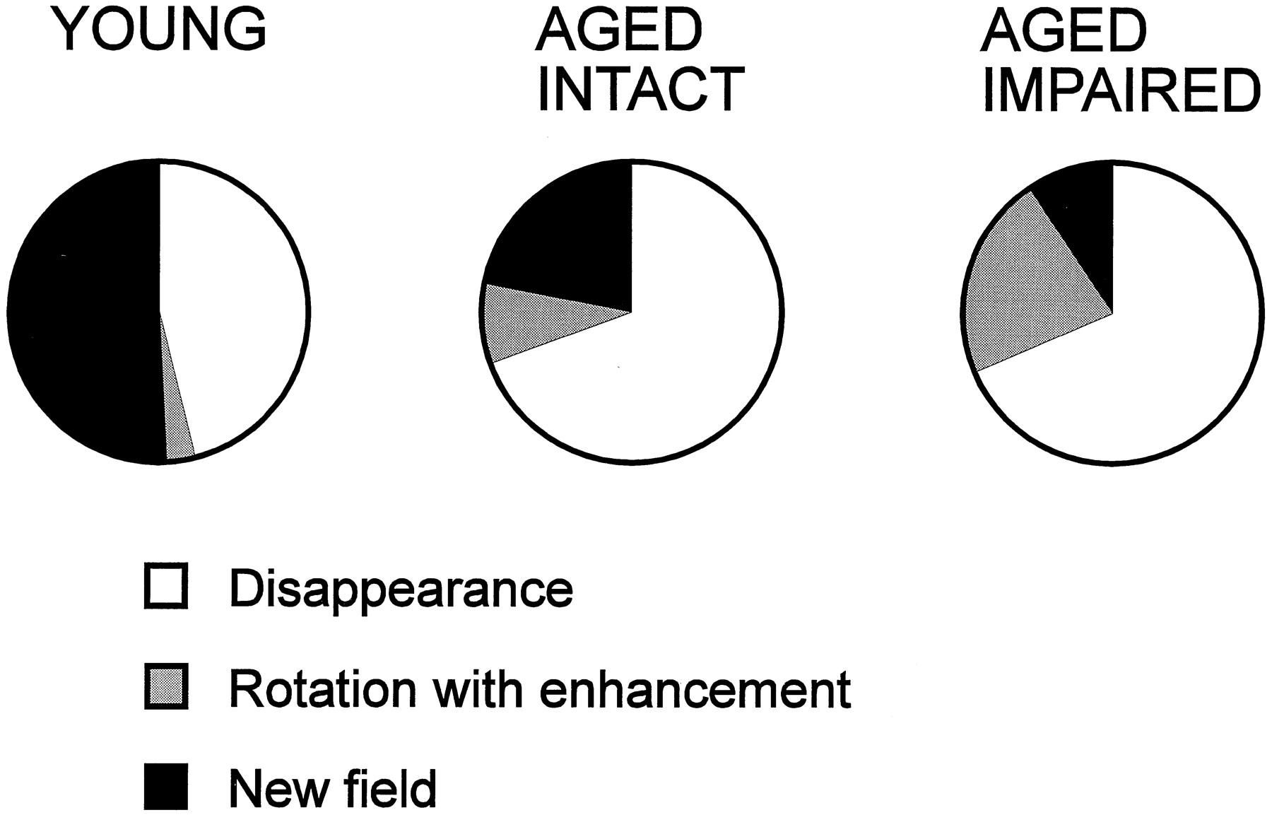 Brain Aging Changes In The Nature Of Information Coding By Cal Custom Gauge Amp Wiring Free Download Diagram Schematic Figure Open New Tab Powerpoint