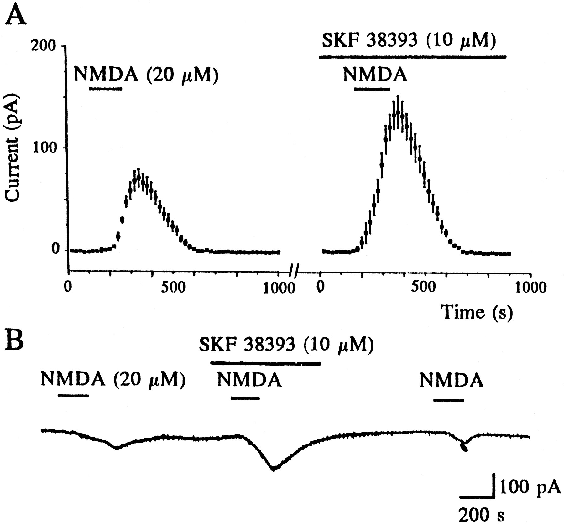A Postsynaptic Interaction between Dopamine D1 and NMDA Receptors