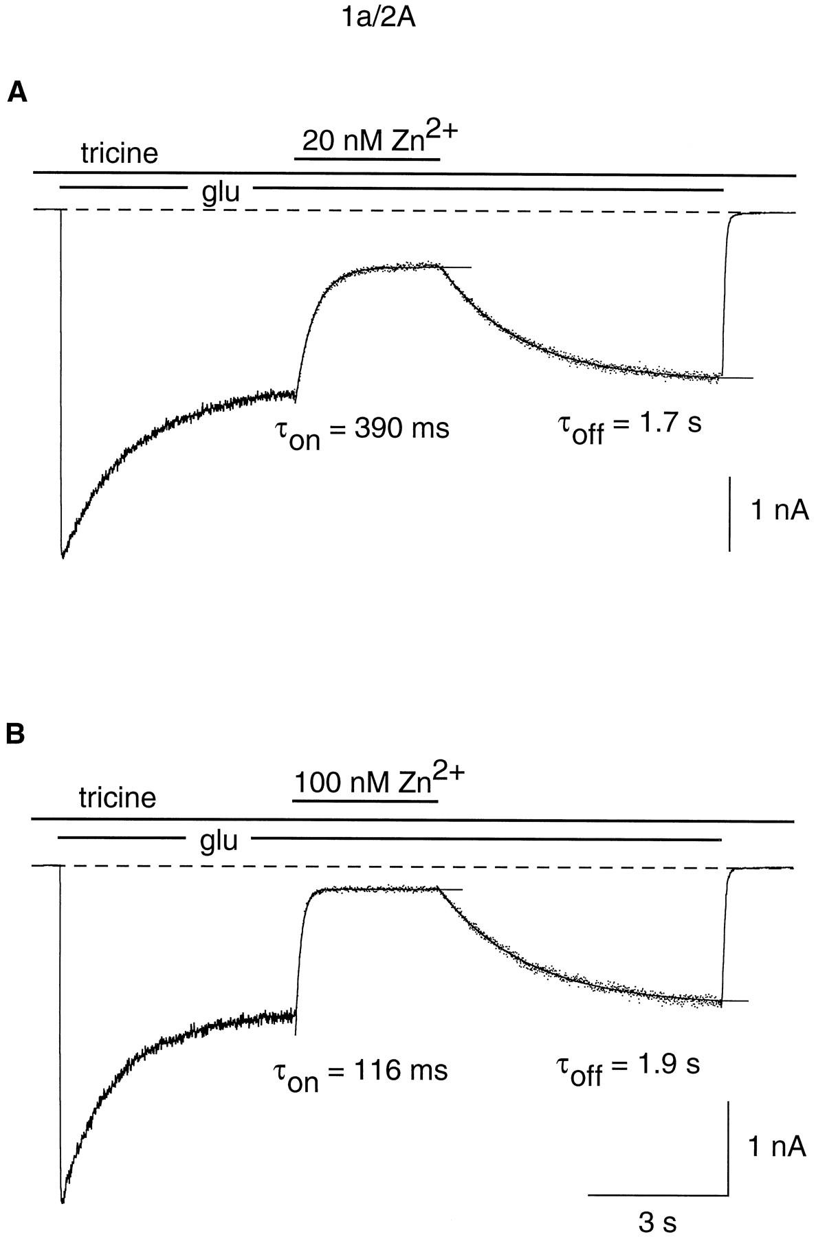 High-Affinity Zinc Inhibition of NMDA NR1–NR2A Receptors