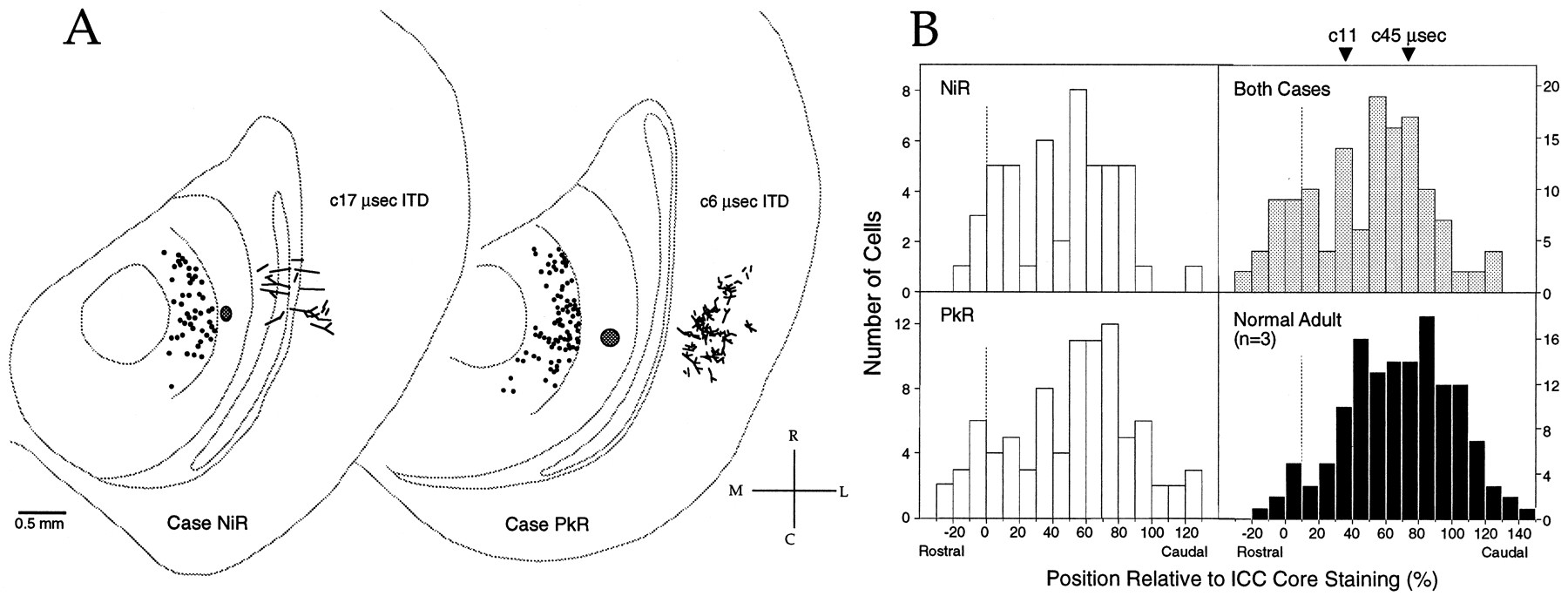 An Anatomical Basis for Visual Calibration of the Auditory Space Map ...