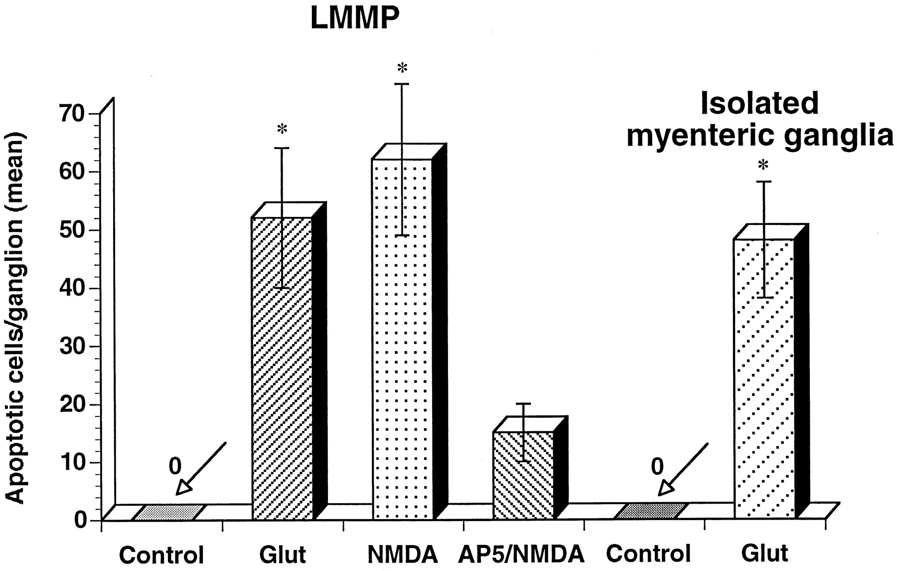 Excitotoxicity in the Enteric Nervous System | Journal of