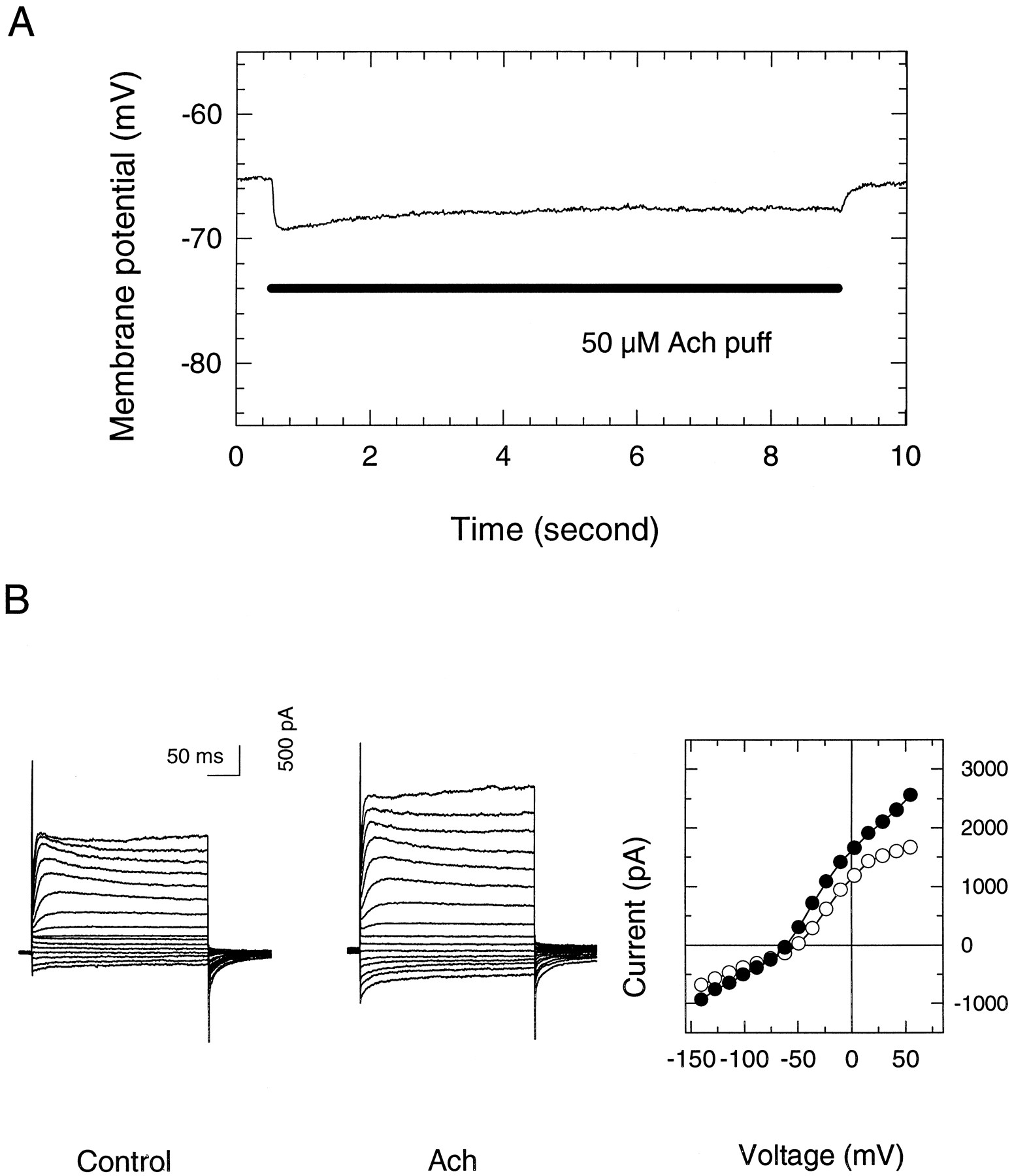 Acetylcholine outer hair cell electromotility and the cochlear fig 2 pooptronica