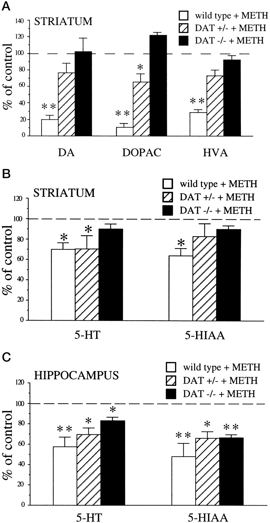 Role of Dopamine Transporter in Methamphetamine-Induced ...