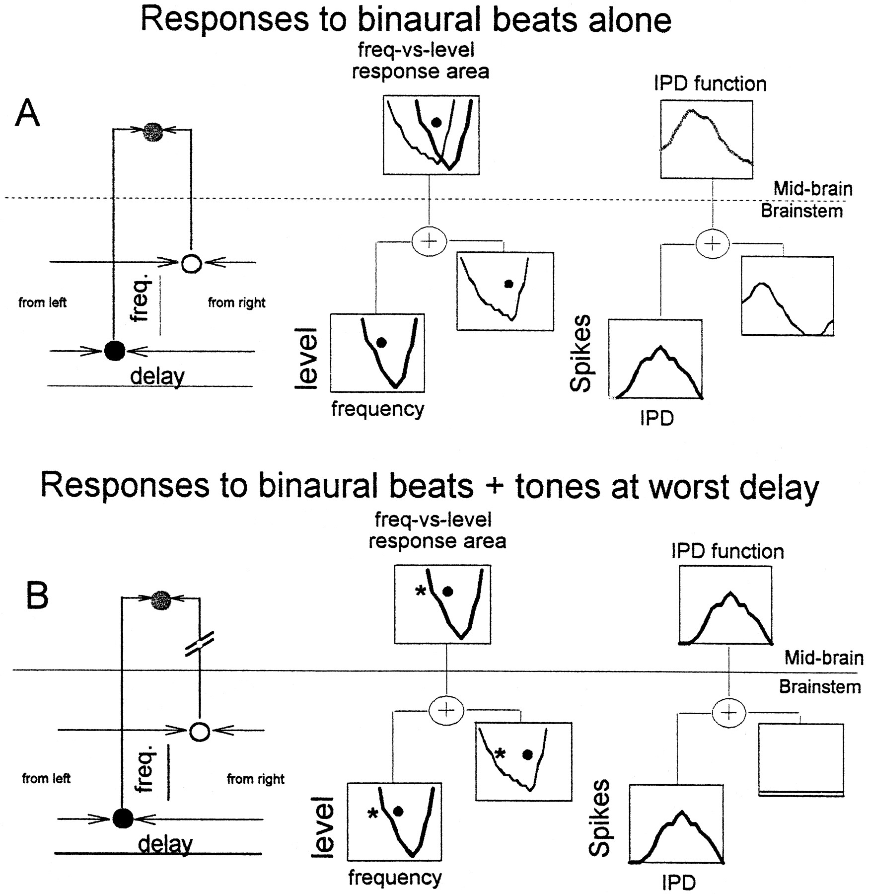 Convergent Input From Brainstem Coincidence Detectors Onto Delay Marshall Mg Cab Wiring Diagram Download Figure
