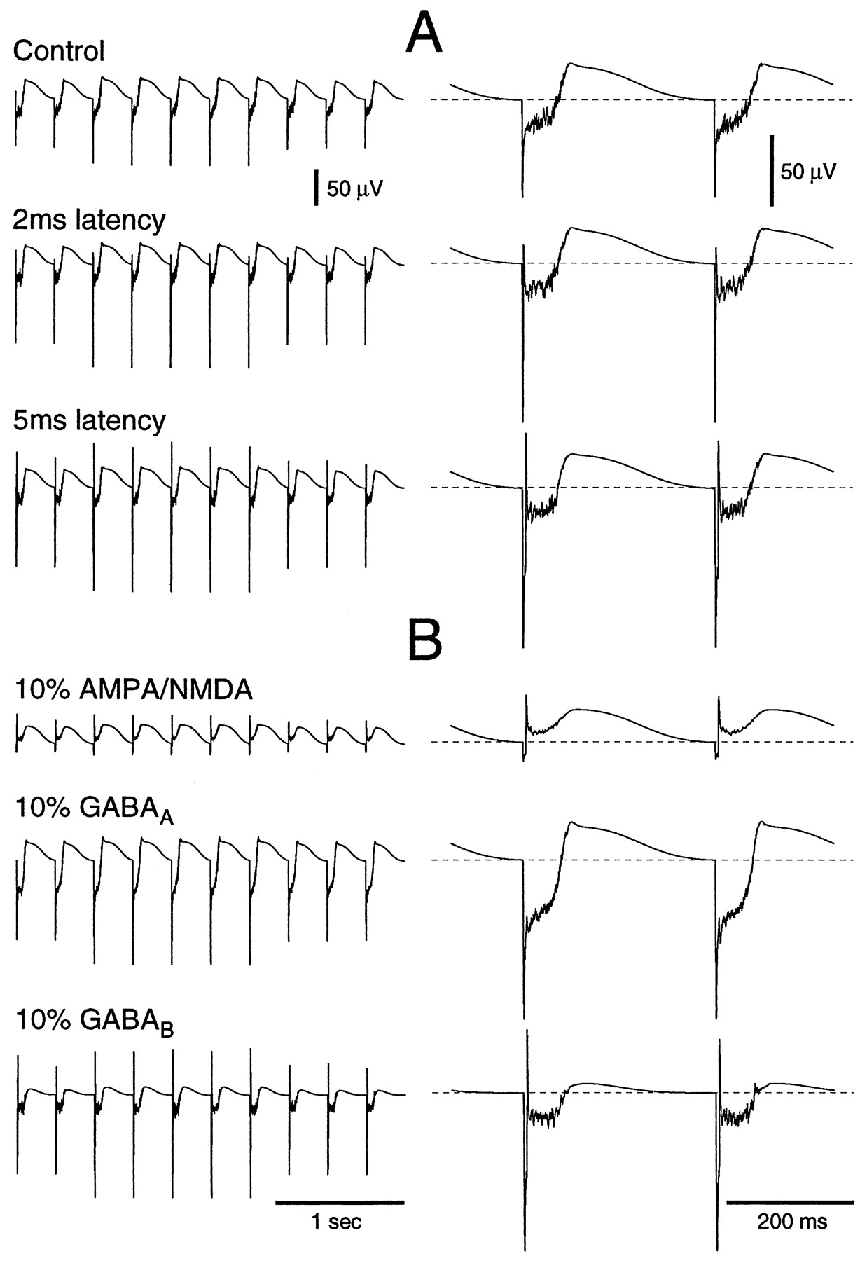 Spike-and-Wave Oscillations Based on the Properties of GABAB