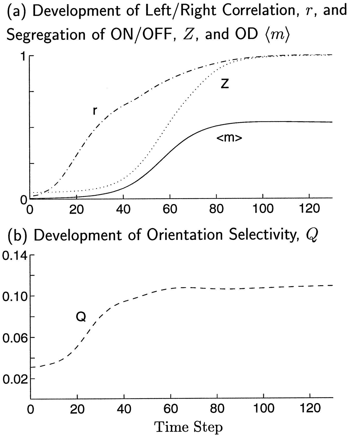 Correlation Based Development of Ocularly Matched Orientation and