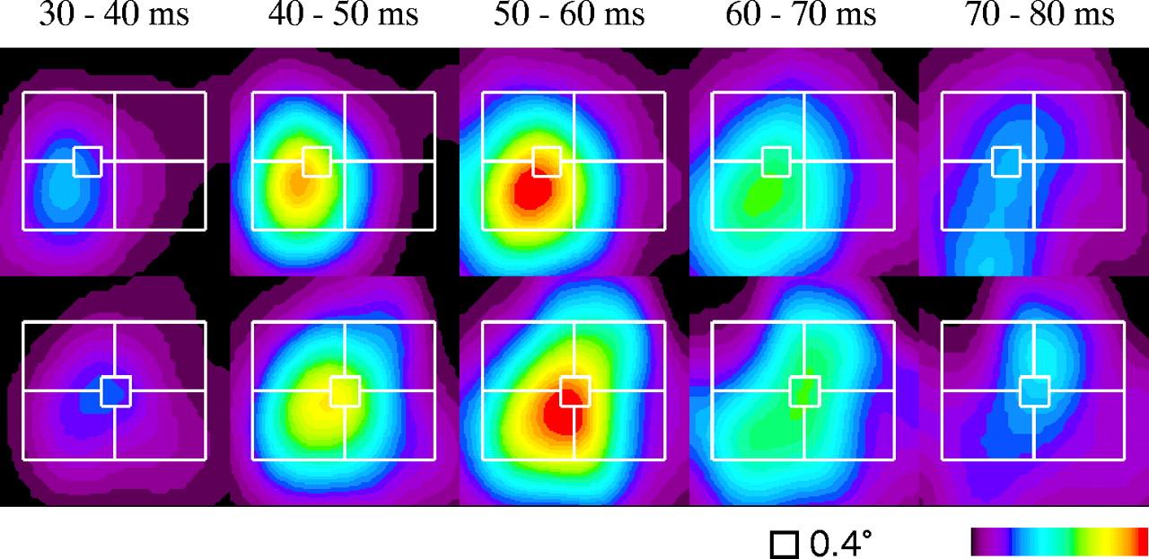 Parametric Population Representation Of Retinal Location Neuronal - Evolution visual effects last 130 years