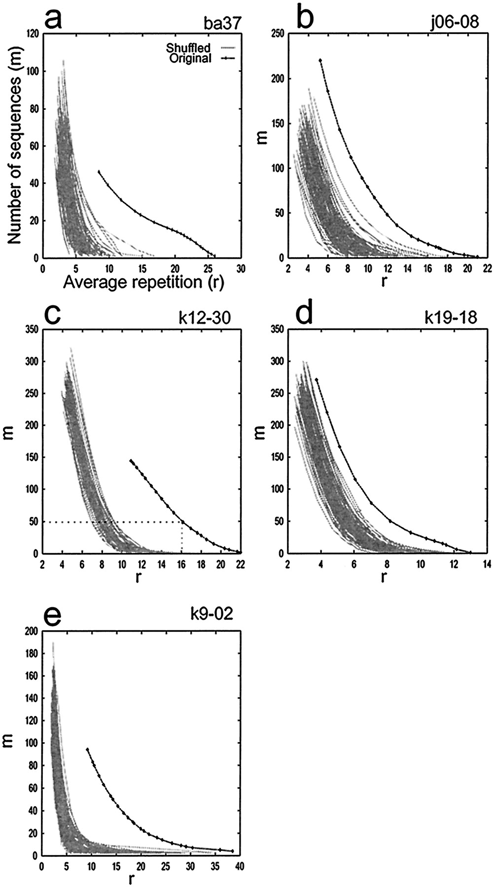 replay and time compression of recurring spike sequences in the