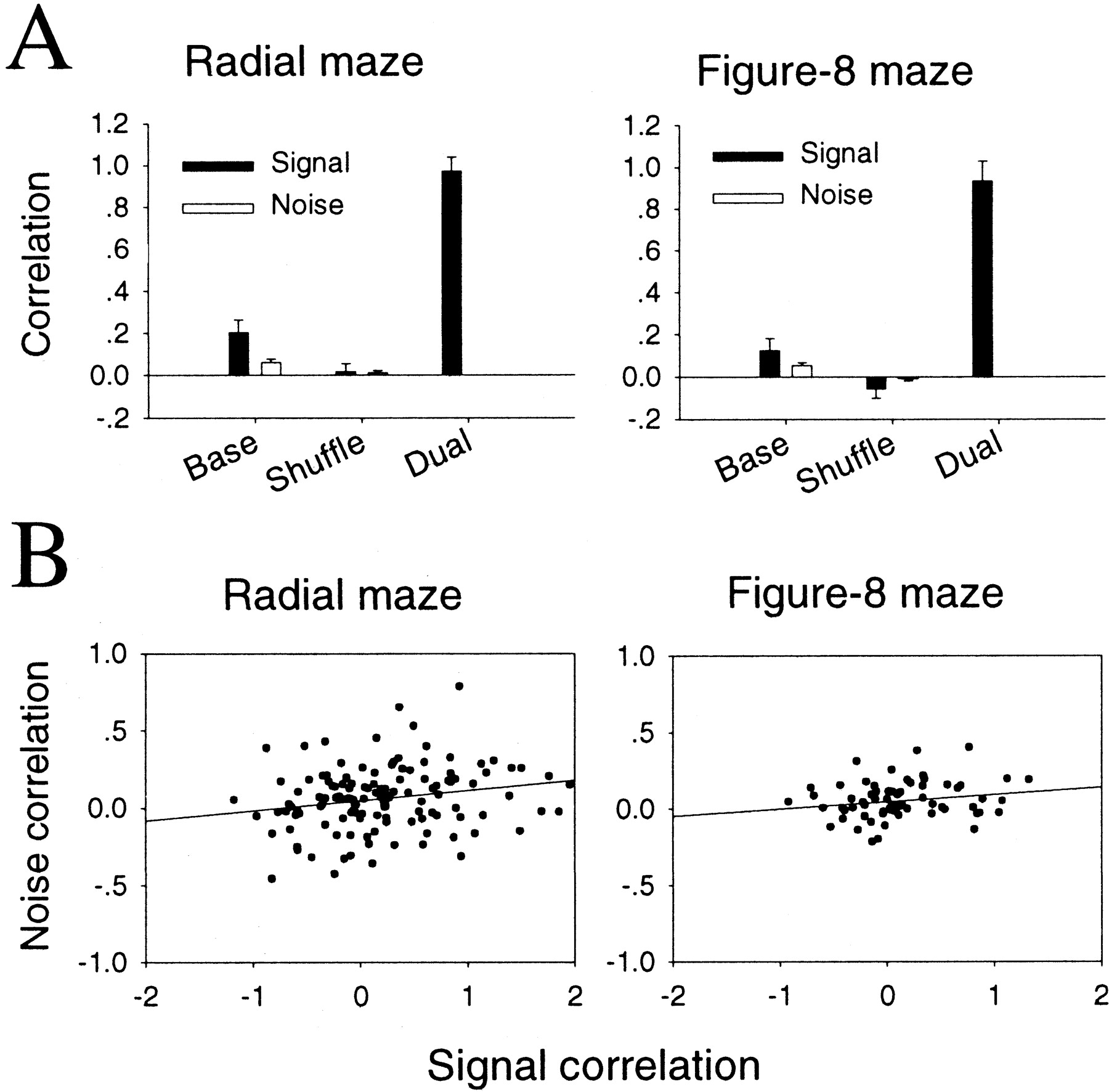 Relationship among Discharges of Neighboring Neurons in the