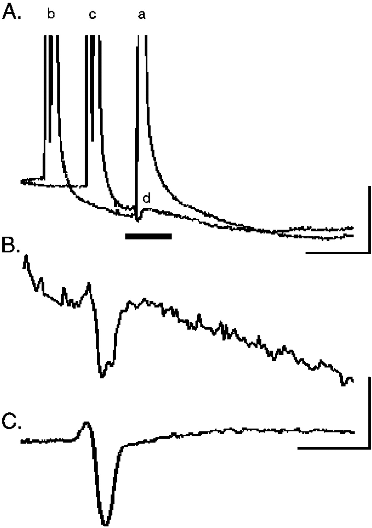 Nerve Injury Induces Gap Junctional Coupling Among Axotomized Adult Wiring Diagram Besides Cat 5 Cable On Goodman Download Figure
