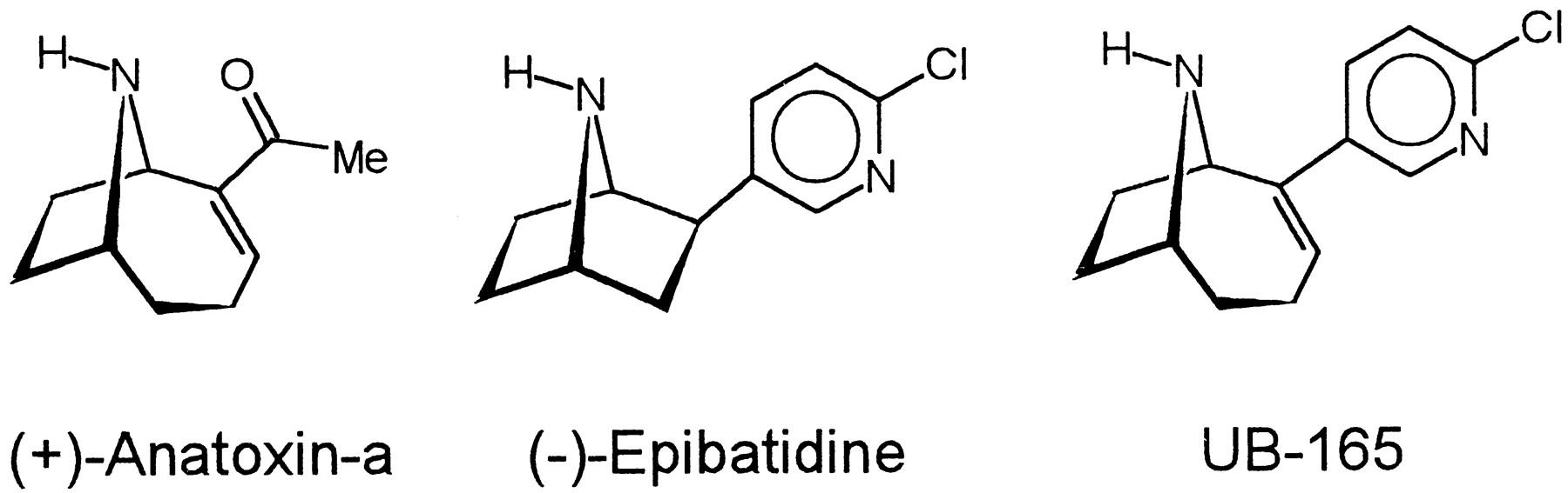 Ub 165 A Novel Nicotinic Agonist With Subtype Selectivity