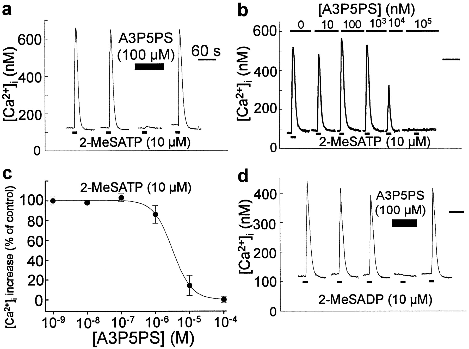 p2y1 purinoceptor mediated ca2 signaling and ca2 wave propagation