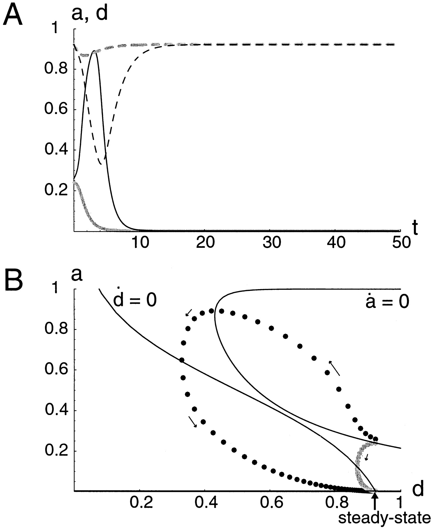 modeling of spontaneous activity in developing spinal cord using Spinal Nerves download figure