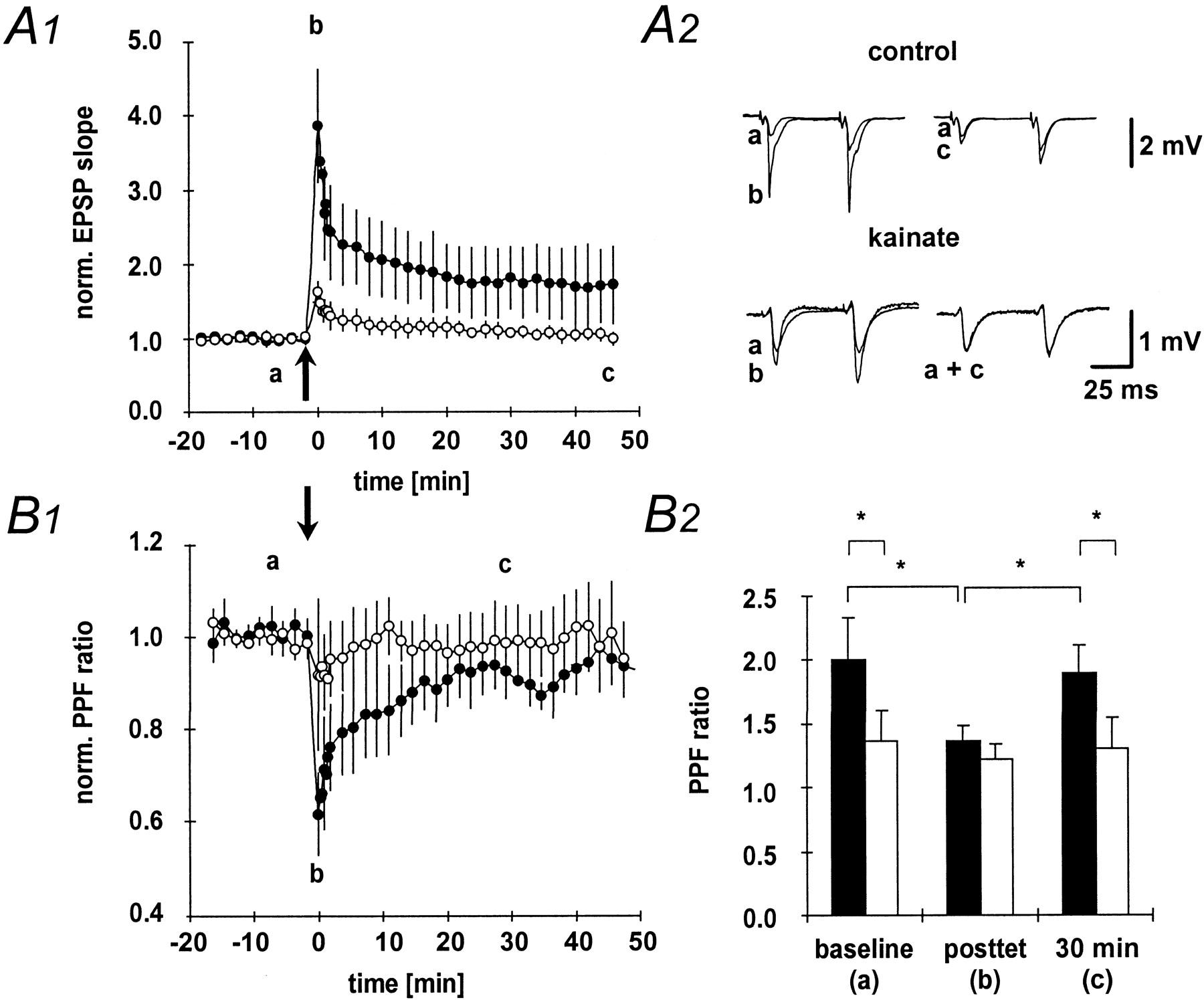 Metaplasticity of mossy fiber synaptic transmission involves download figure buycottarizona