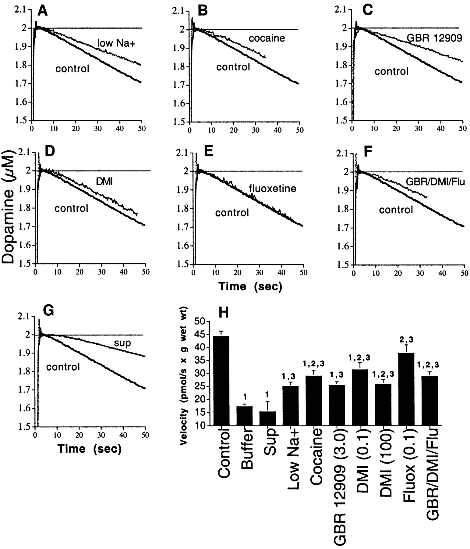 Characterization of Extracellular Dopamine Clearance in the