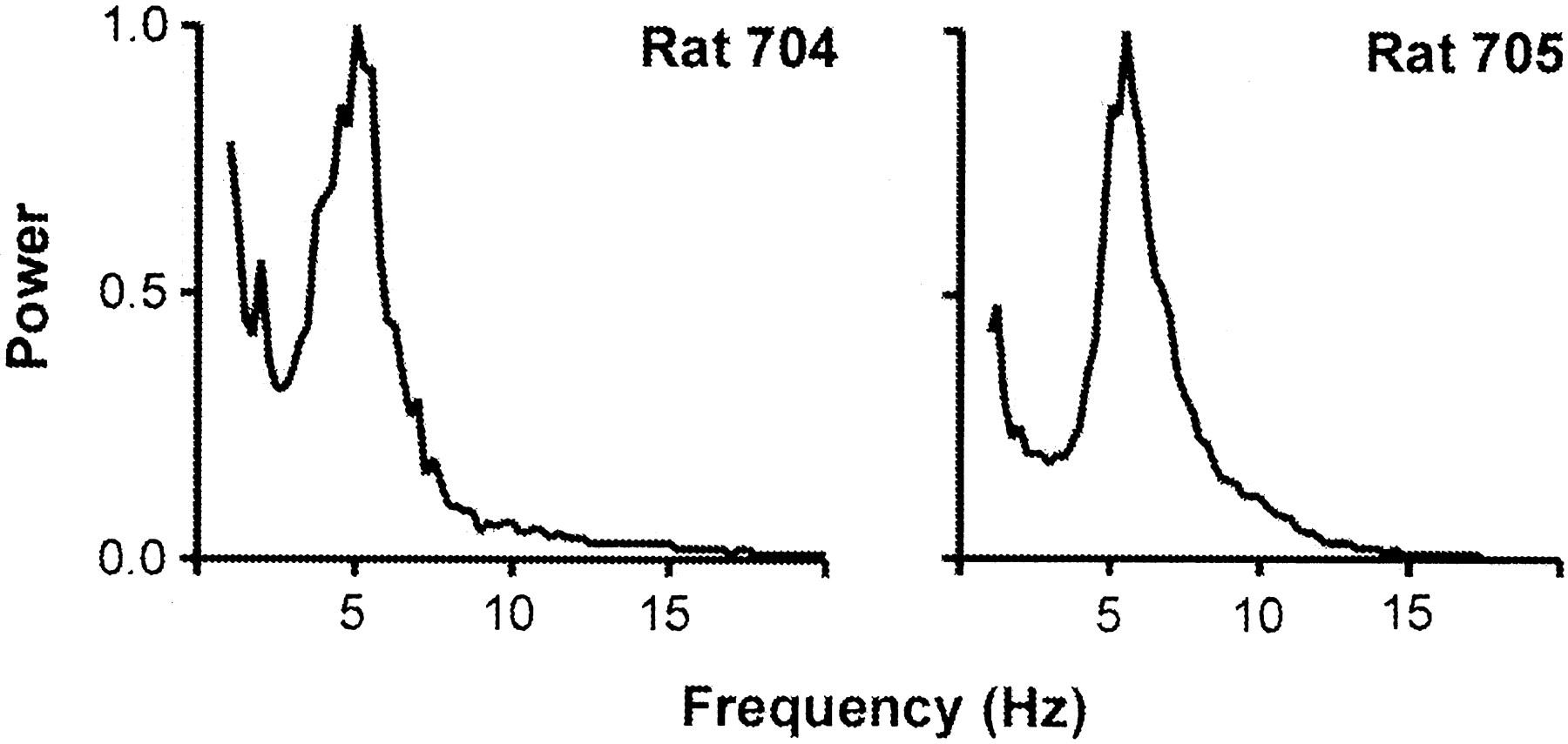 Whisker Deafferentation And Rodent Whisking Patterns Behavioral 1956 Dj 3a Willys Wiring Diagram Download Figure