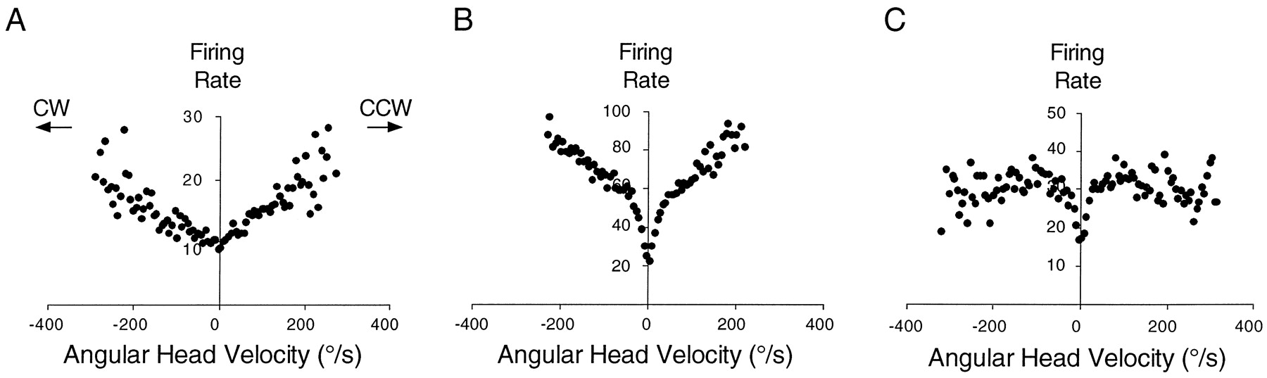 Neural Correlates for Angular Head Velocity in the Rat Dorsal