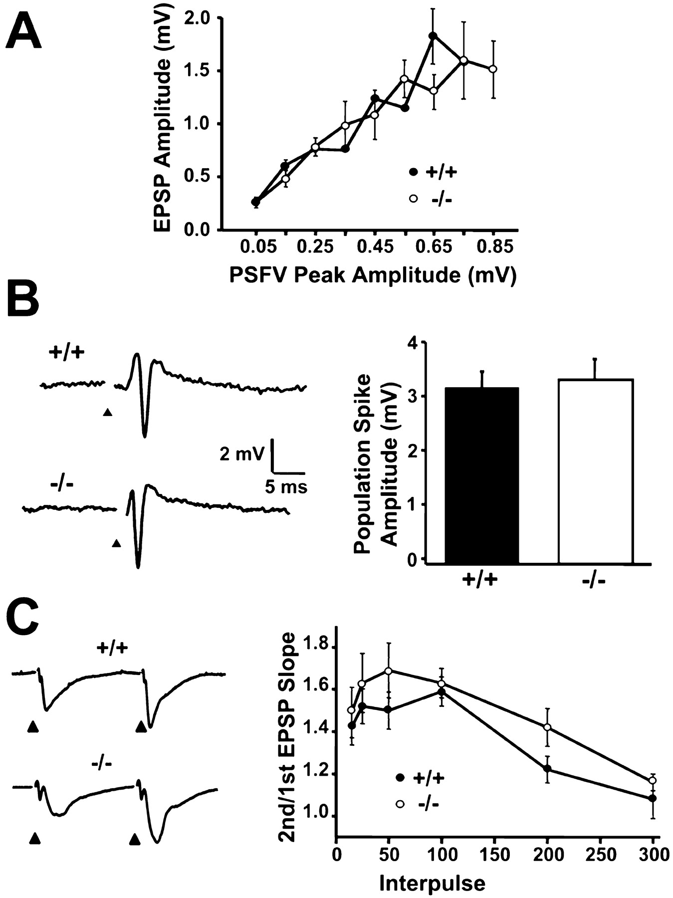 Loss Of Hippocampal Serine Protease Bsp1 Neuropsin Predisposes To Yy 250 Wiring Diagram Download Figure