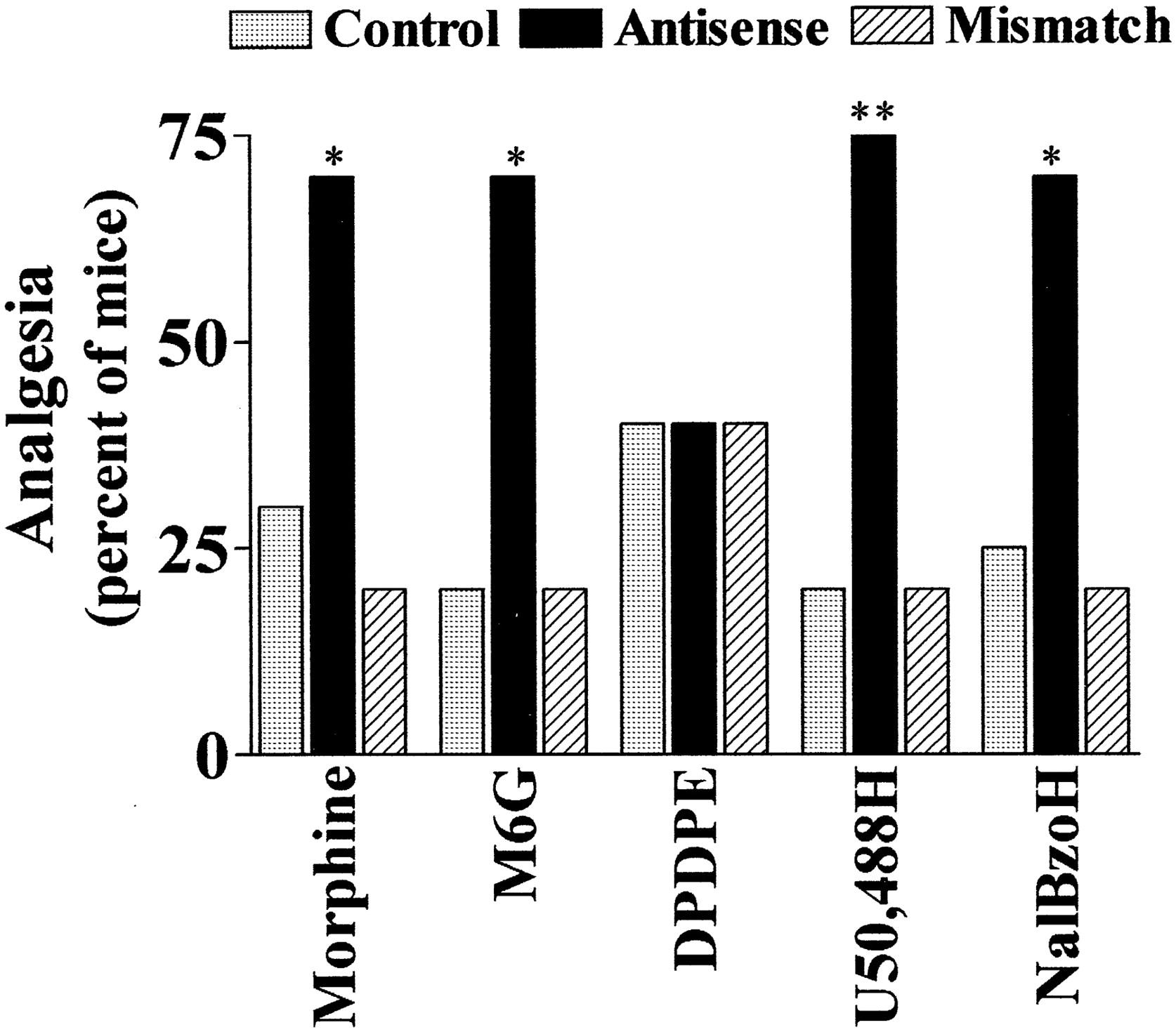 the opiate receptors pasternak gavril w