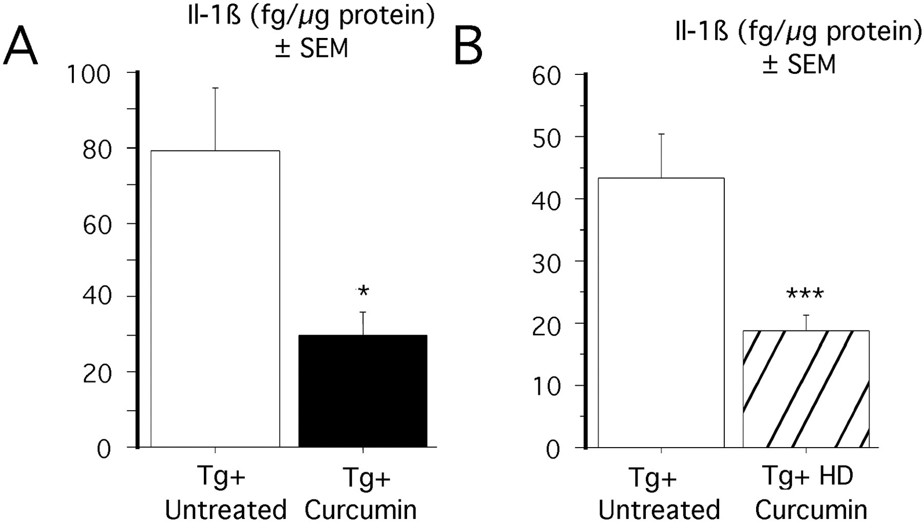 The Curry Spice Curcumin Reduces Oxidative Damage and Amyloid