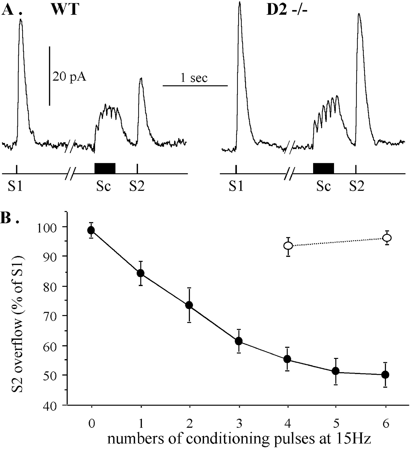Inhibition Of Dopamine Release Via Presynaptic D2 Receptors Time Fm Transmitter Block Diagram Eee Community Download Figure