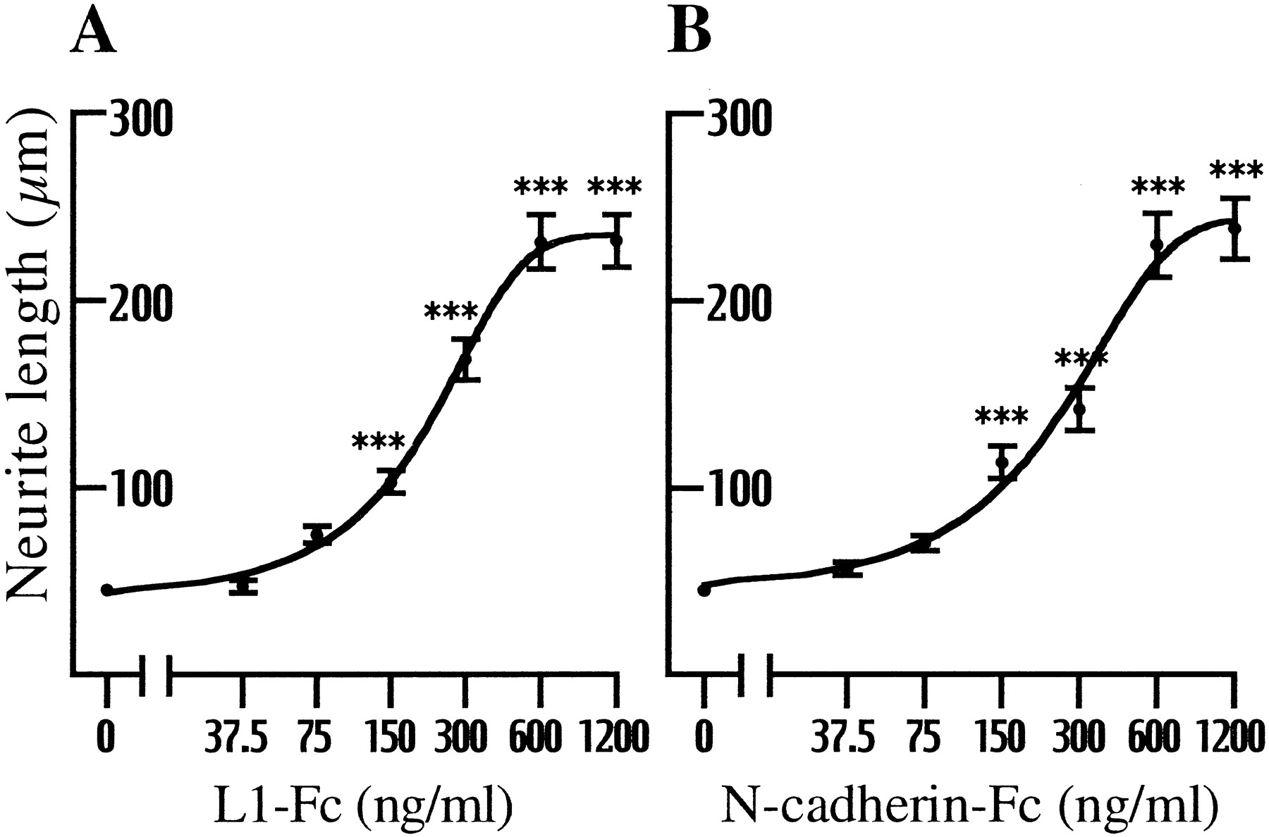 The Role Of Endocytic L1 Trafficking In Polarized Adhesion And Diagram Additionally Horse Nervous System On Jeep Tj Steering Download Figure