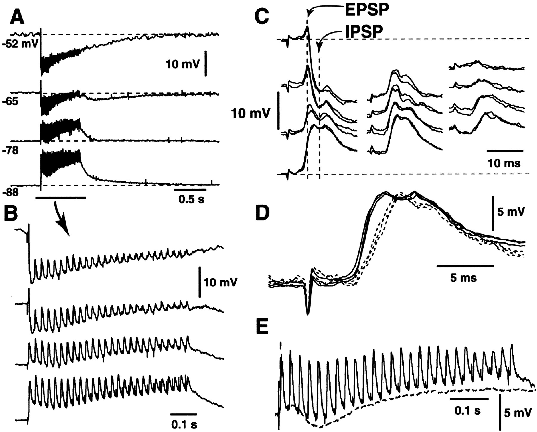 Voltage Sensitive Dye Imaging Of Neocortical Spatiotemporal Dynamics Case Ih Wiring Schematic 1822 Download Figure