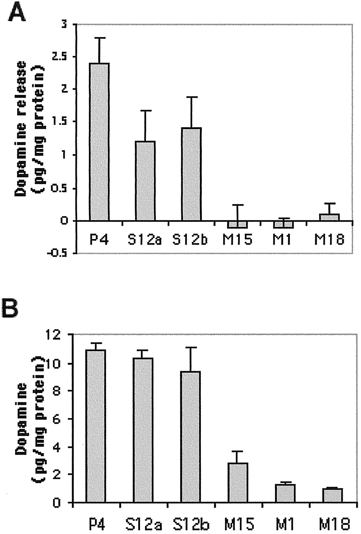 Expression of A53T Mutant But Not Wild-Type α-Synuclein in PC12