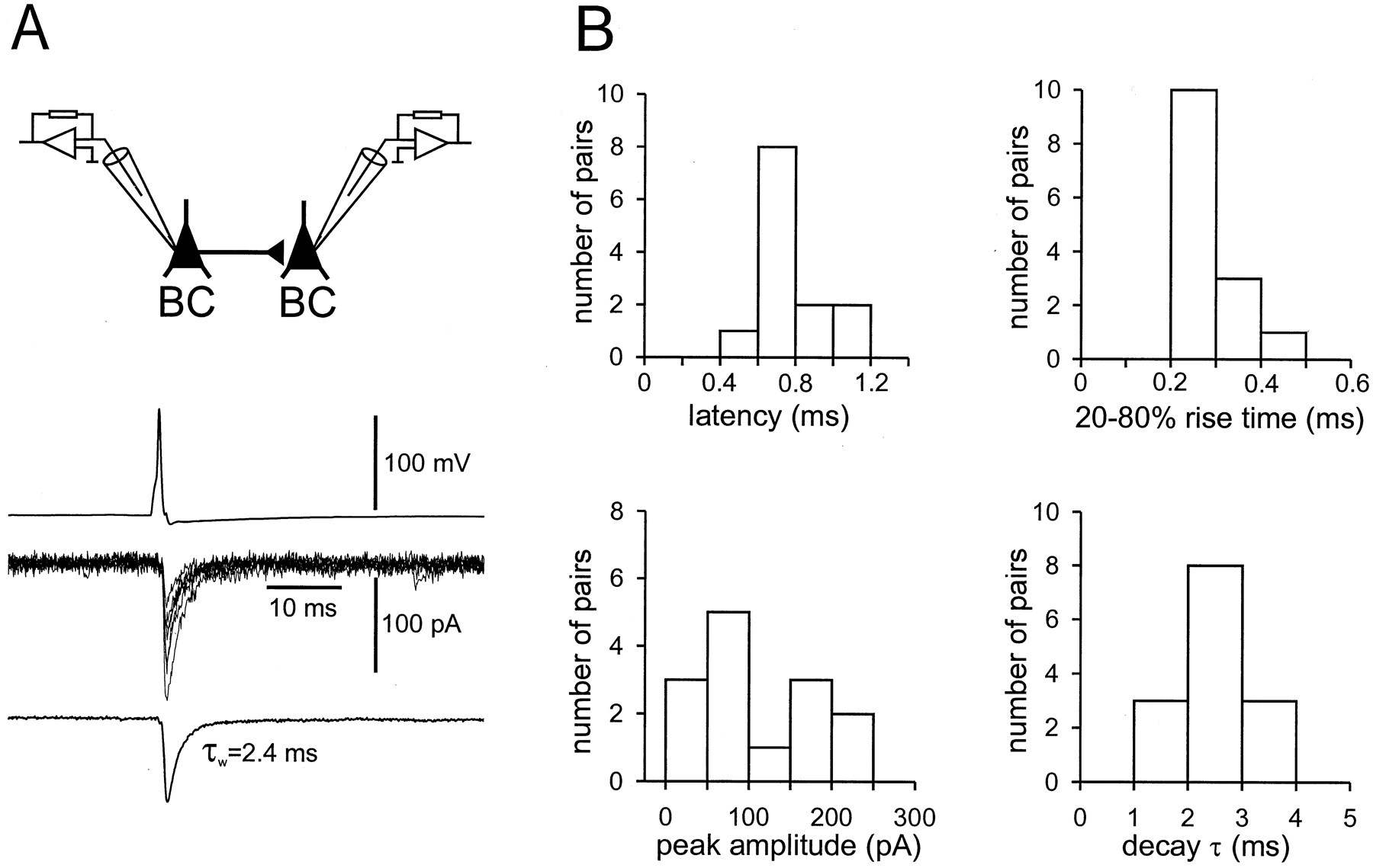 Rapid Signaling At Inhibitory Synapses In A Dentate Gyrus 1997 Ford F 150 Hose Schematic Download Figure