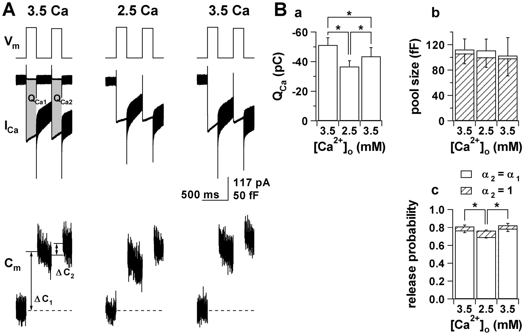 Increase in the pool size of releasable synaptic vesicles by the download figure biocorpaavc Image collections