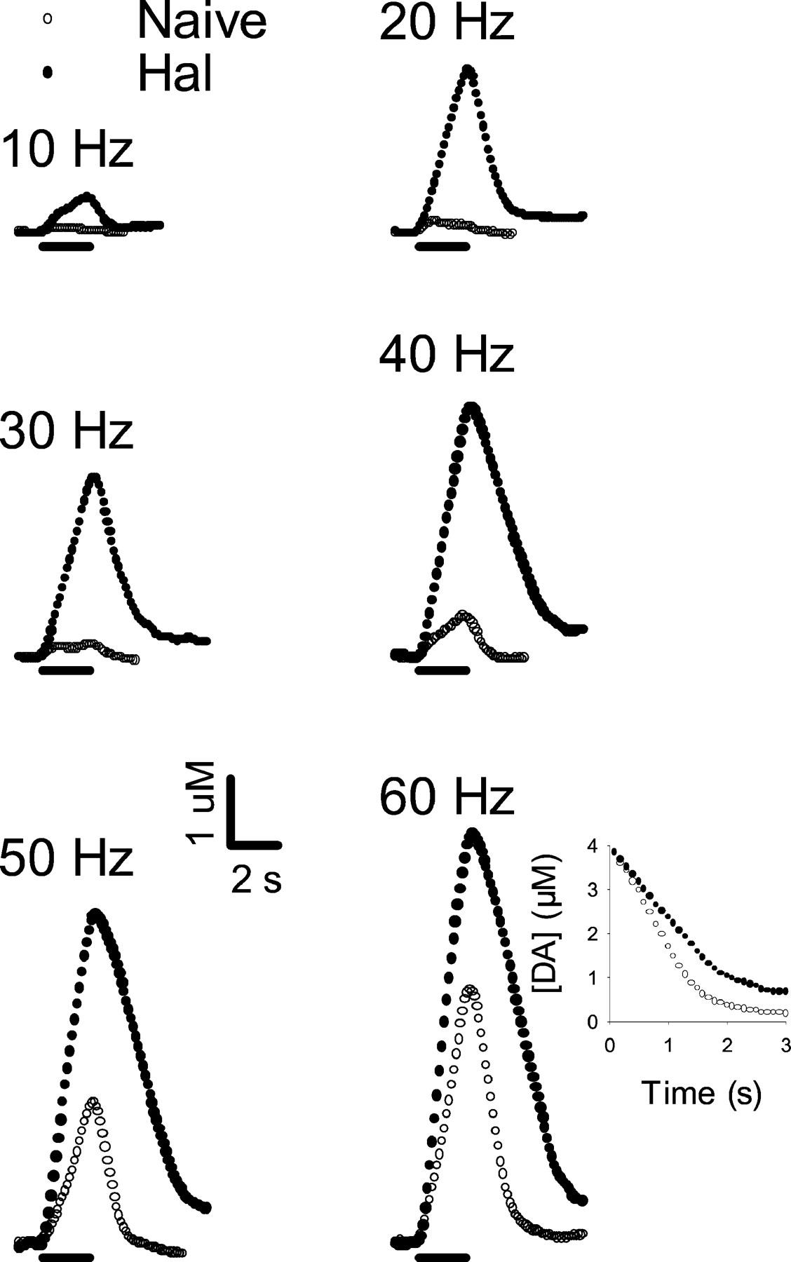 Concurrent Autoreceptor Mediated Control Of Dopamine Release And Zenith Stromberg Carburetor Parts Diagram Besides Download Figure