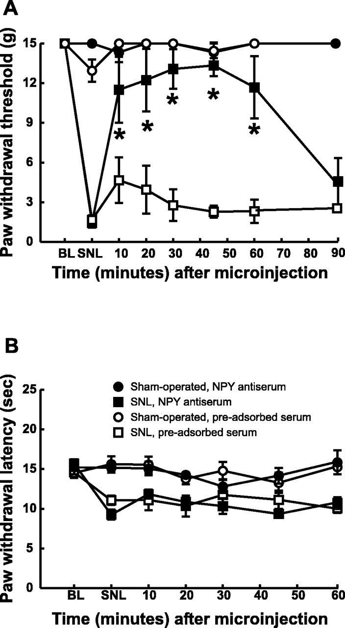 Selective Mediation Of Nerve Injury Induced Tactile Hypersensitivity Tan America Timer Wiring Diagram Download Figure