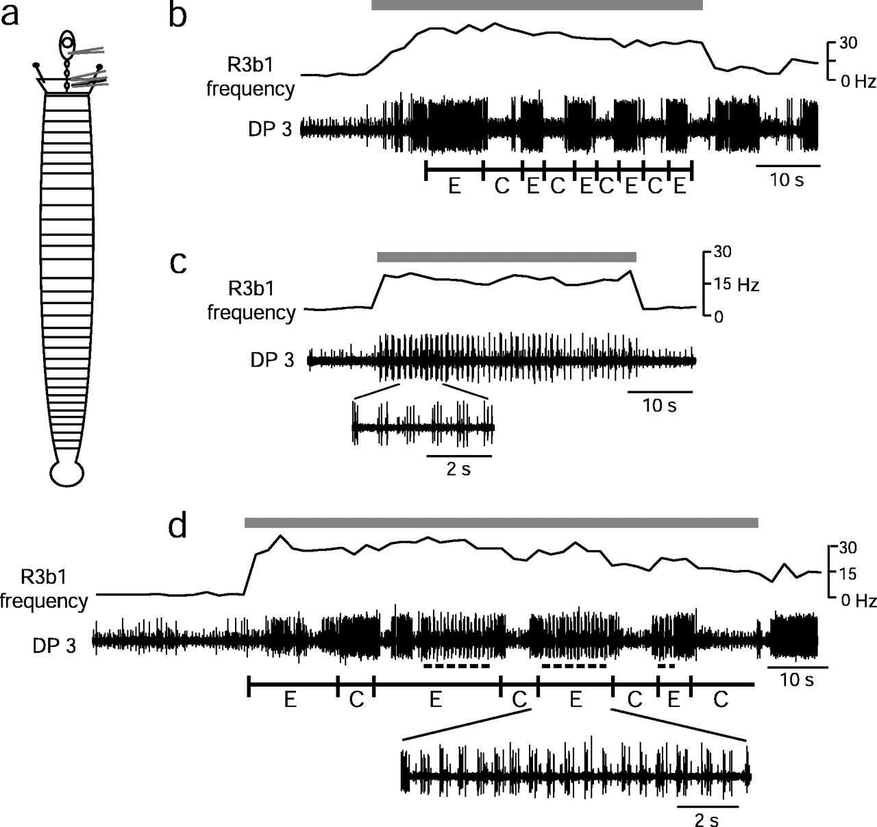 Evidence For Sequential Decision Making In The Medicinal Leech 1996 B100 Fuse Box Diagram Download Figure