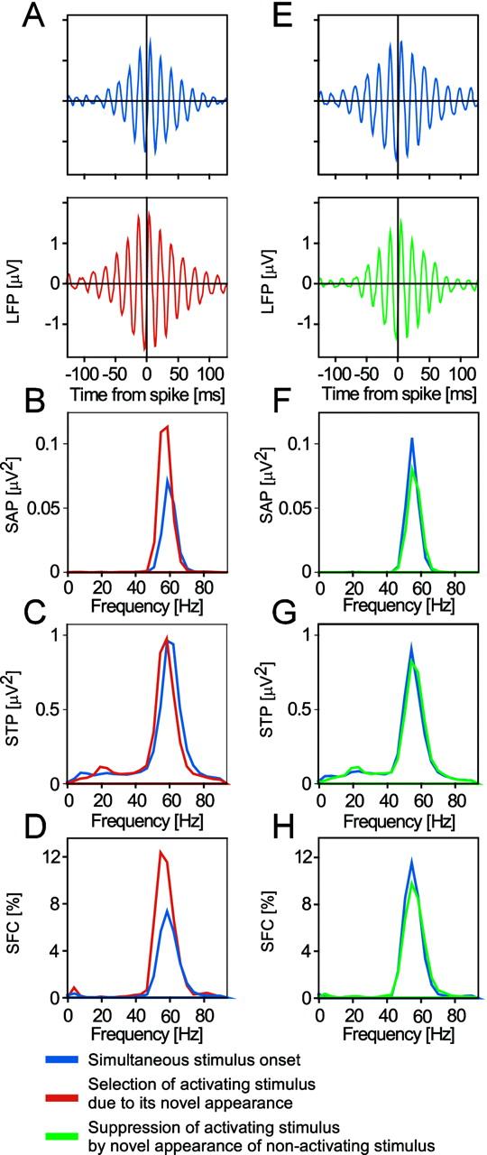 Oscillatory Neuronal Synchronization in Primary Visual
