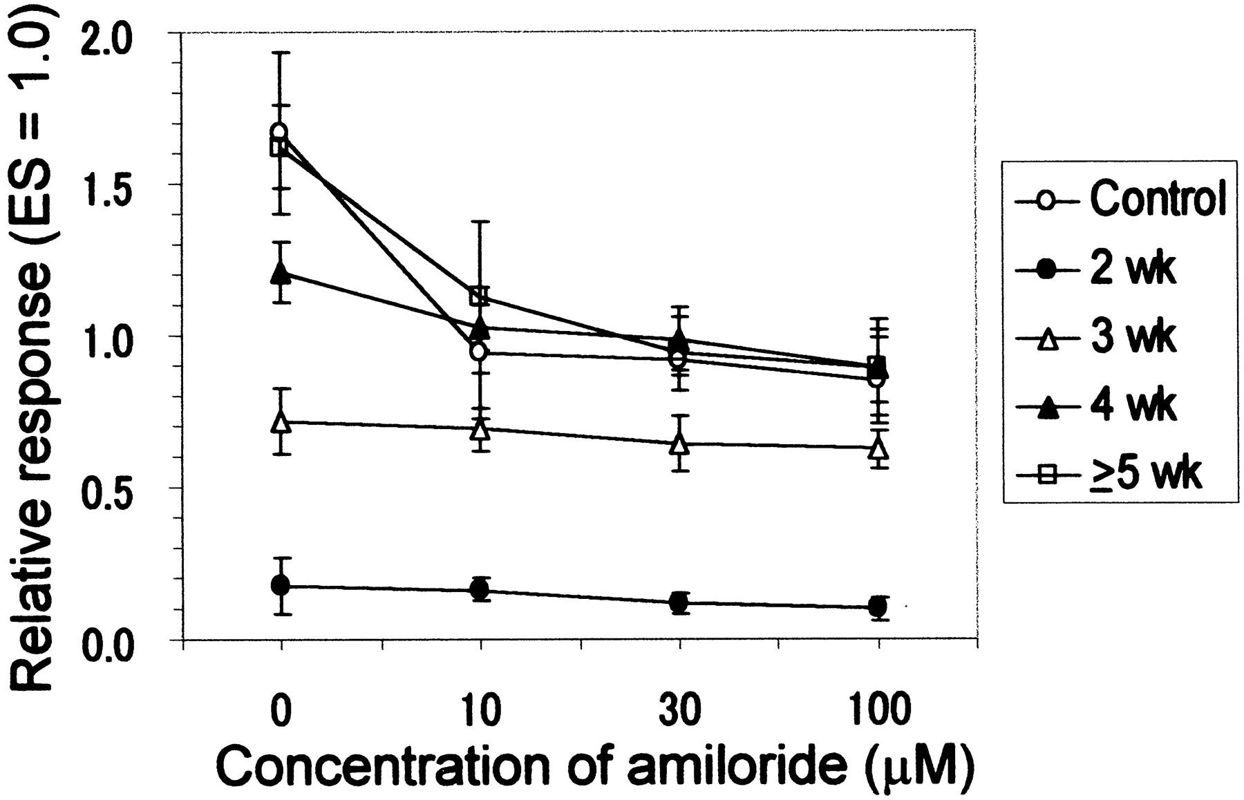 Buy Amiloride