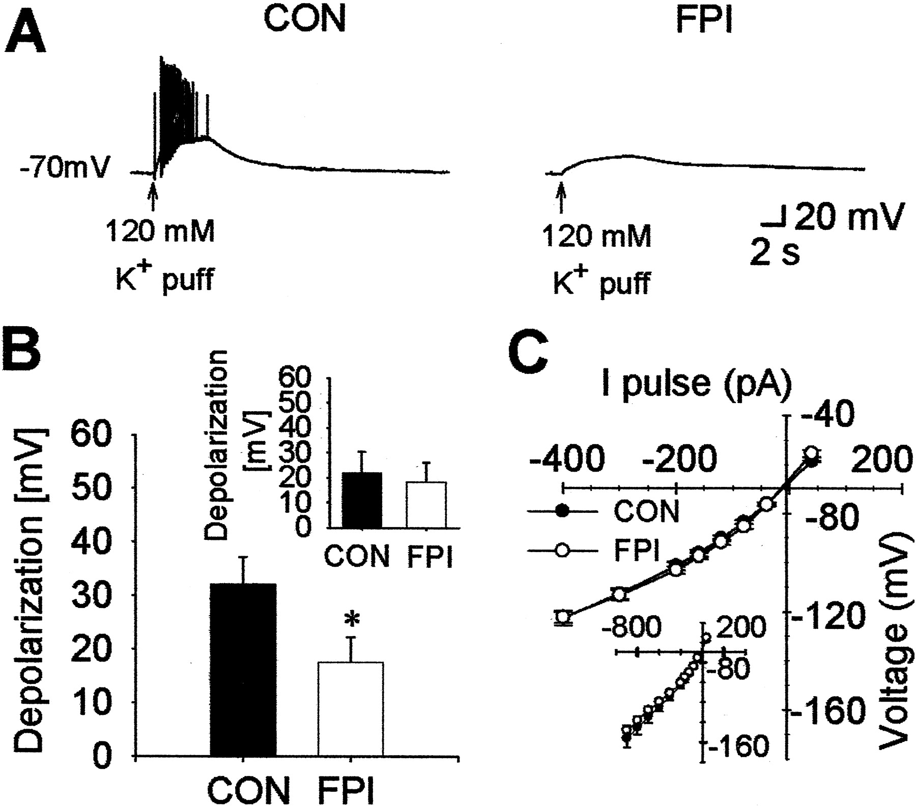Post Traumatic Hyperexcitability Is Not Caused By Impaired Buffering 1994 Grady White Wiring Diagram Download Figure