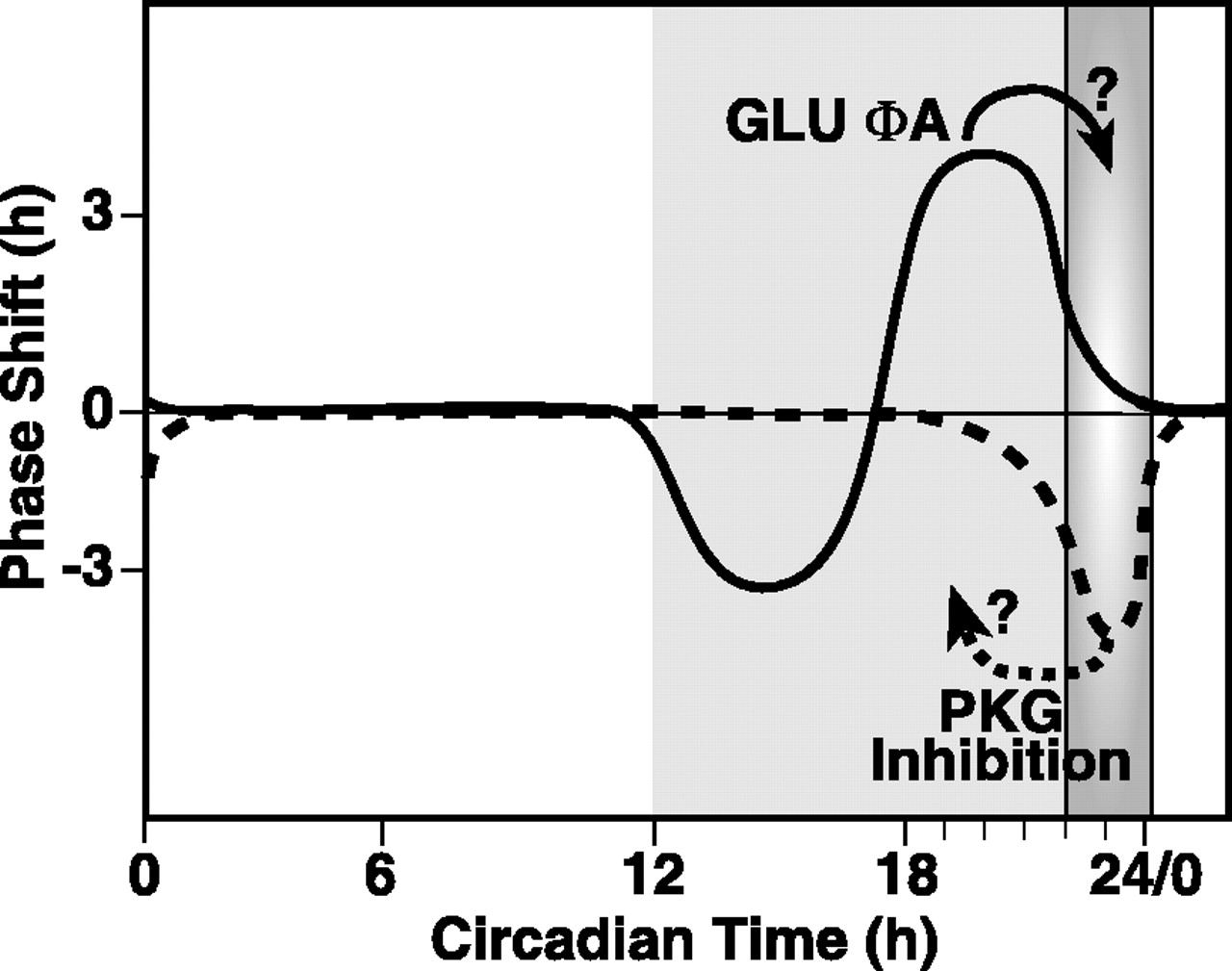 Circadian Clock-Controlled Regulation of cGMP-Protein Kinase G in