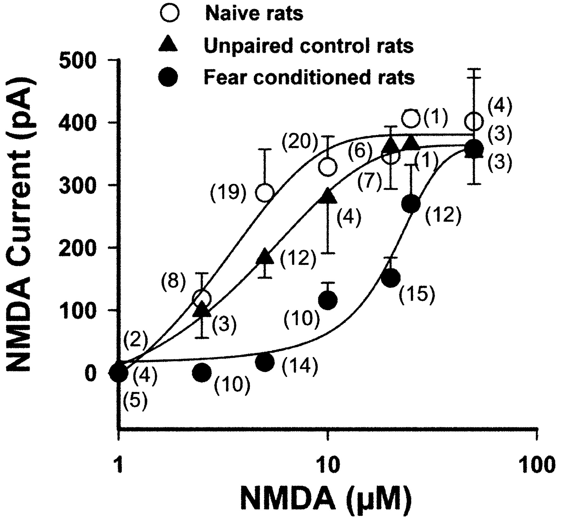 NMDA Currents and Receptor Protein Are Downregulated in the Amygdala