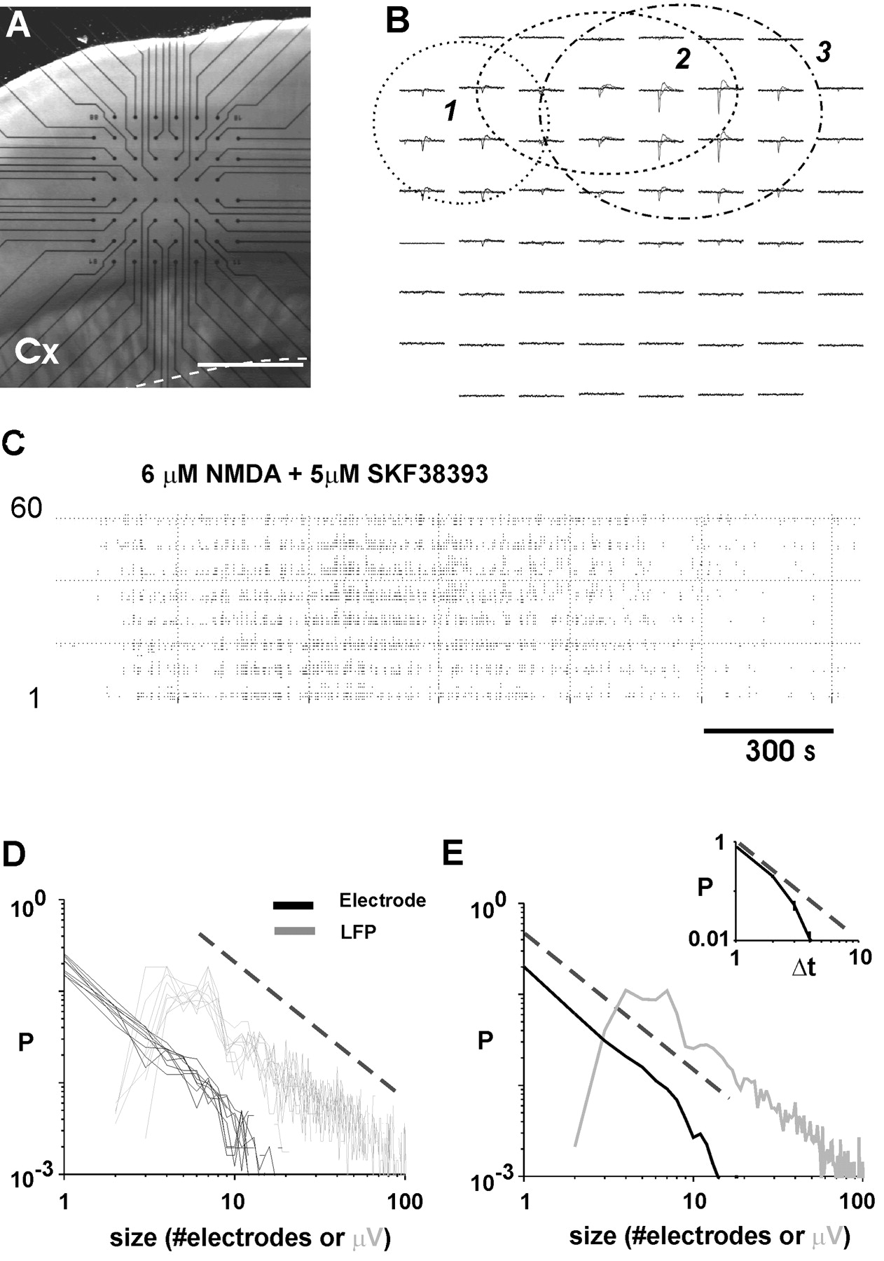 Neuronal Avalanches In Neocortical Circuits Journal Of Neuroscience Abstract Circuit Board With Binary Code Illustration Stock Photo Download Figure