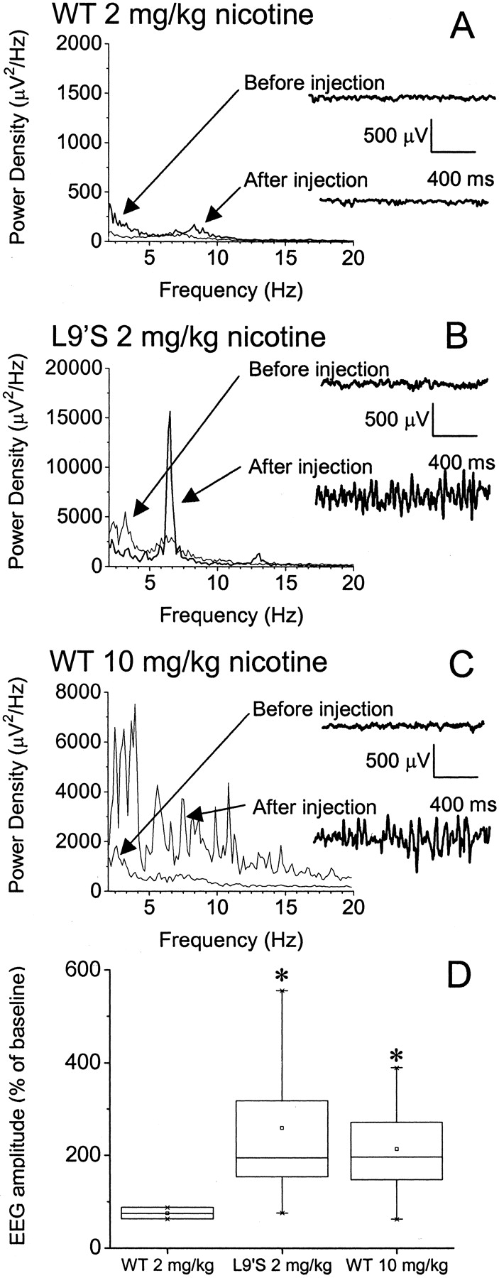 Increased Sensitivity To Agonist Induced Seizures Straub Tail And Mg Power 805 Circuit Download Figure