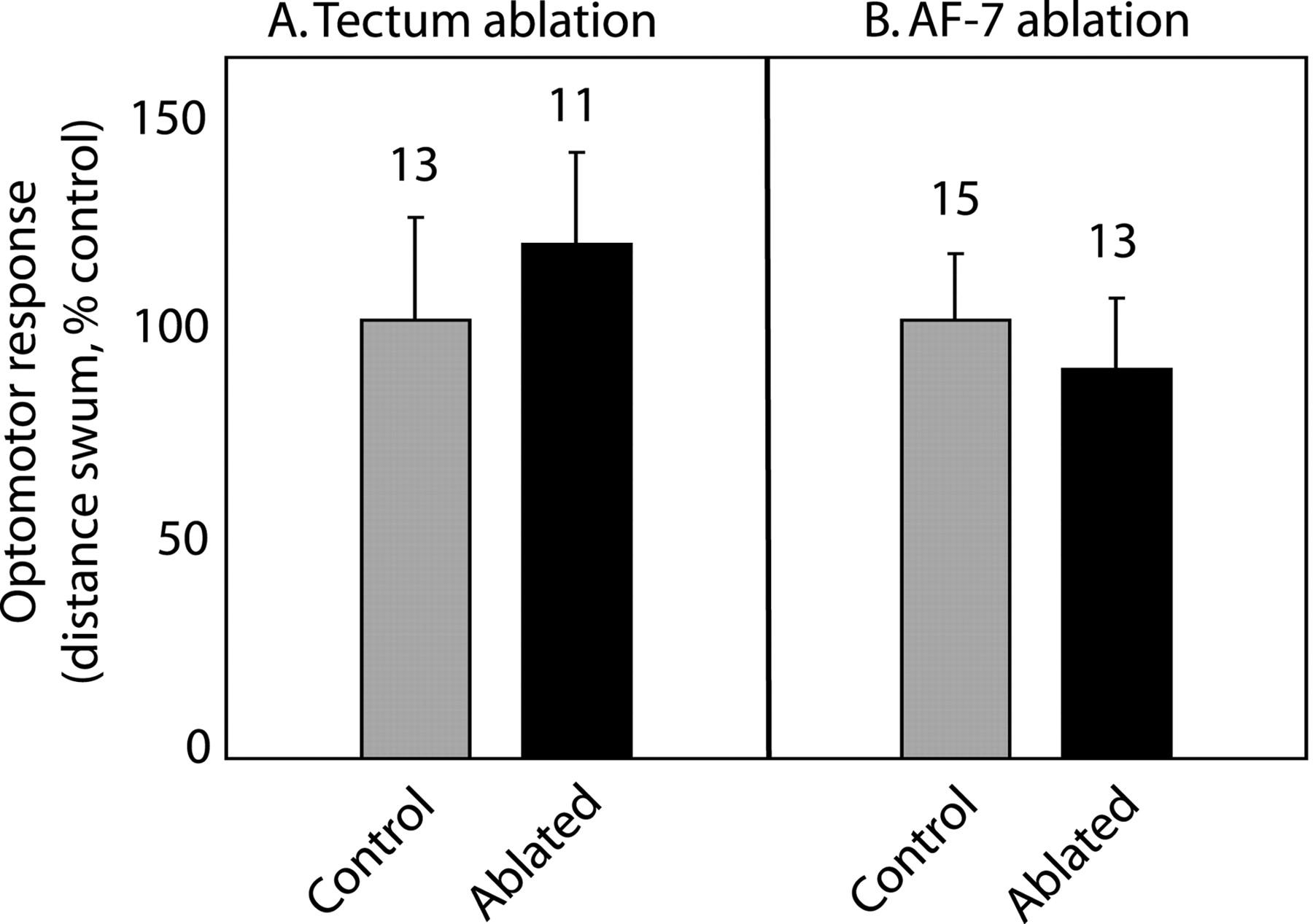 Visuomotor Behaviors in Larval Zebrafish after GFP-Guided