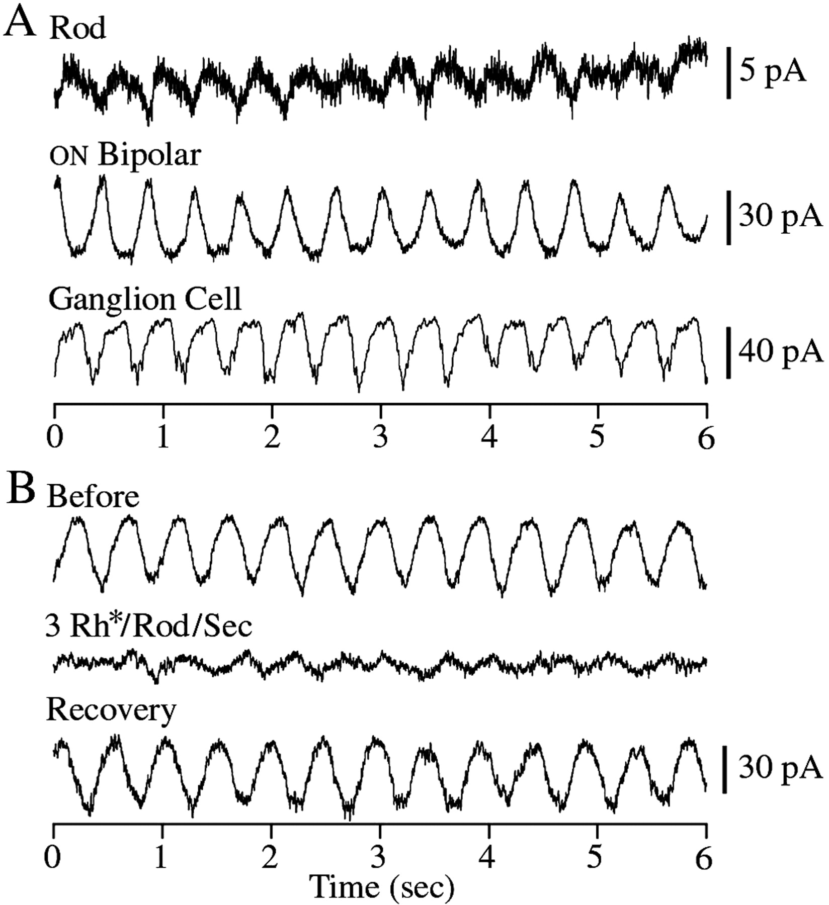 Bandpass Filtering At The Rod To Second Order Cell Synapse In How Troubleshoot This Bandstop Filter Circuit Electrical Download Figure